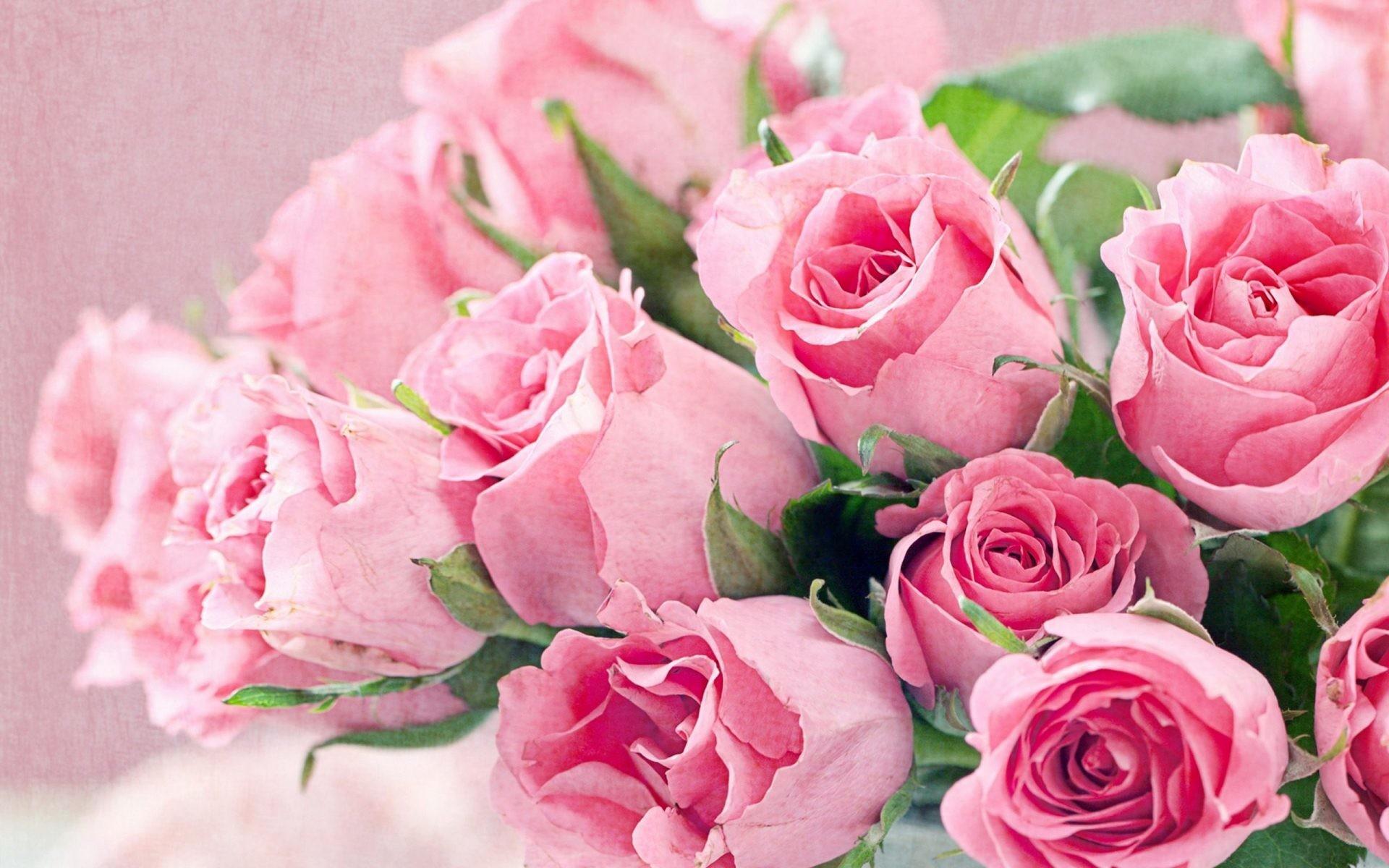 Roses Desktop Wallpaper Wallpapertag