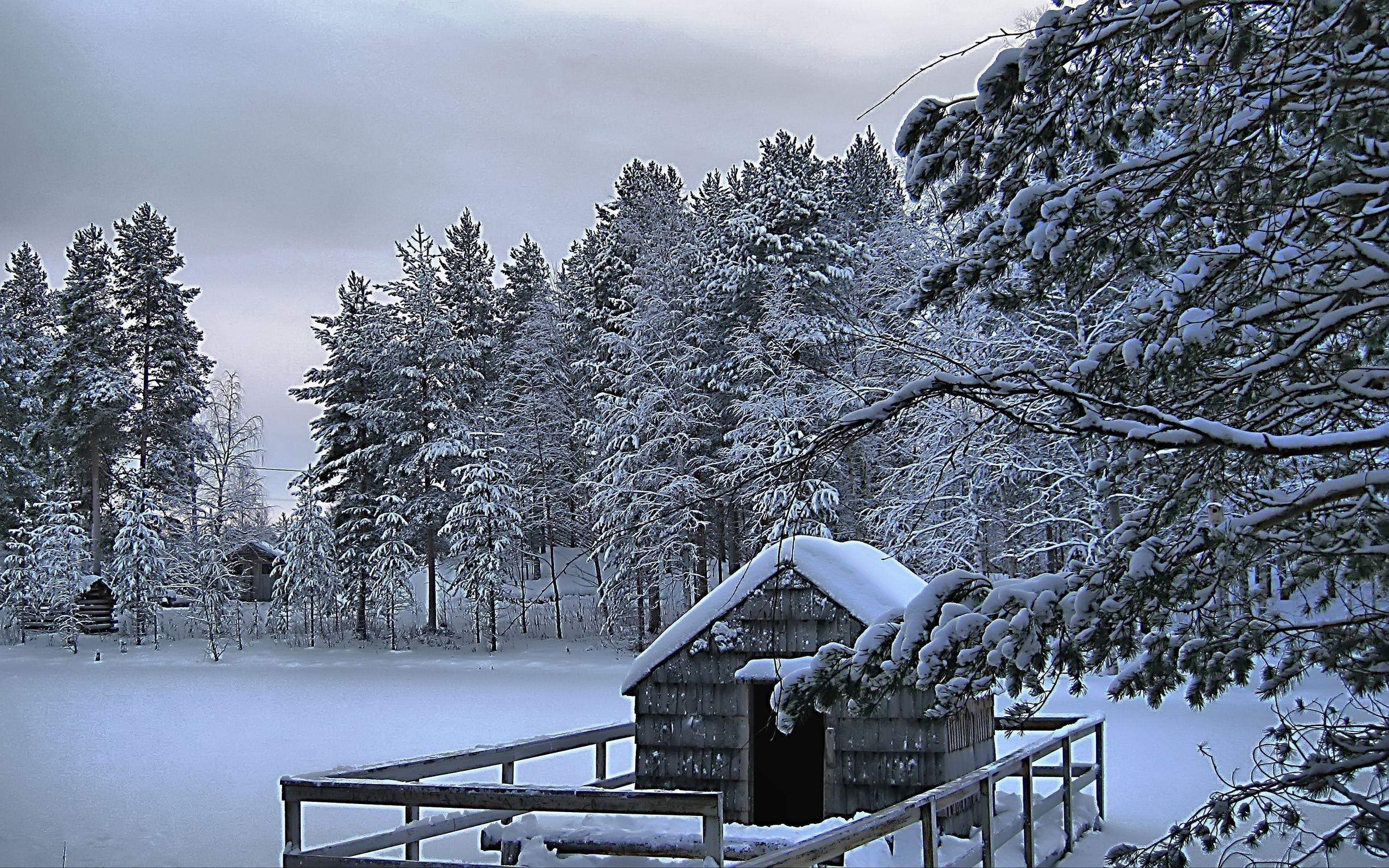 best christmas winter holidays