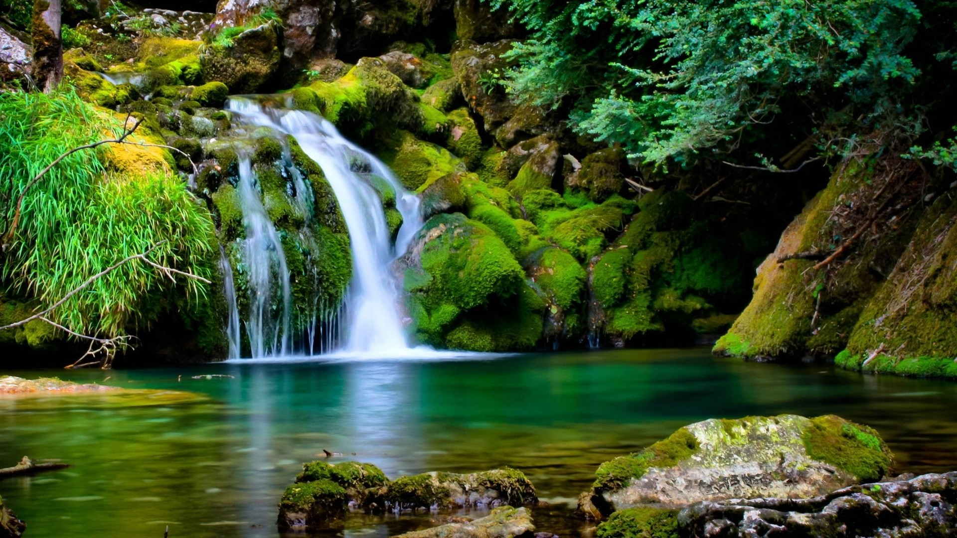 85 Hd Nature Wallpapers Download Free Wallpapers For Desktop