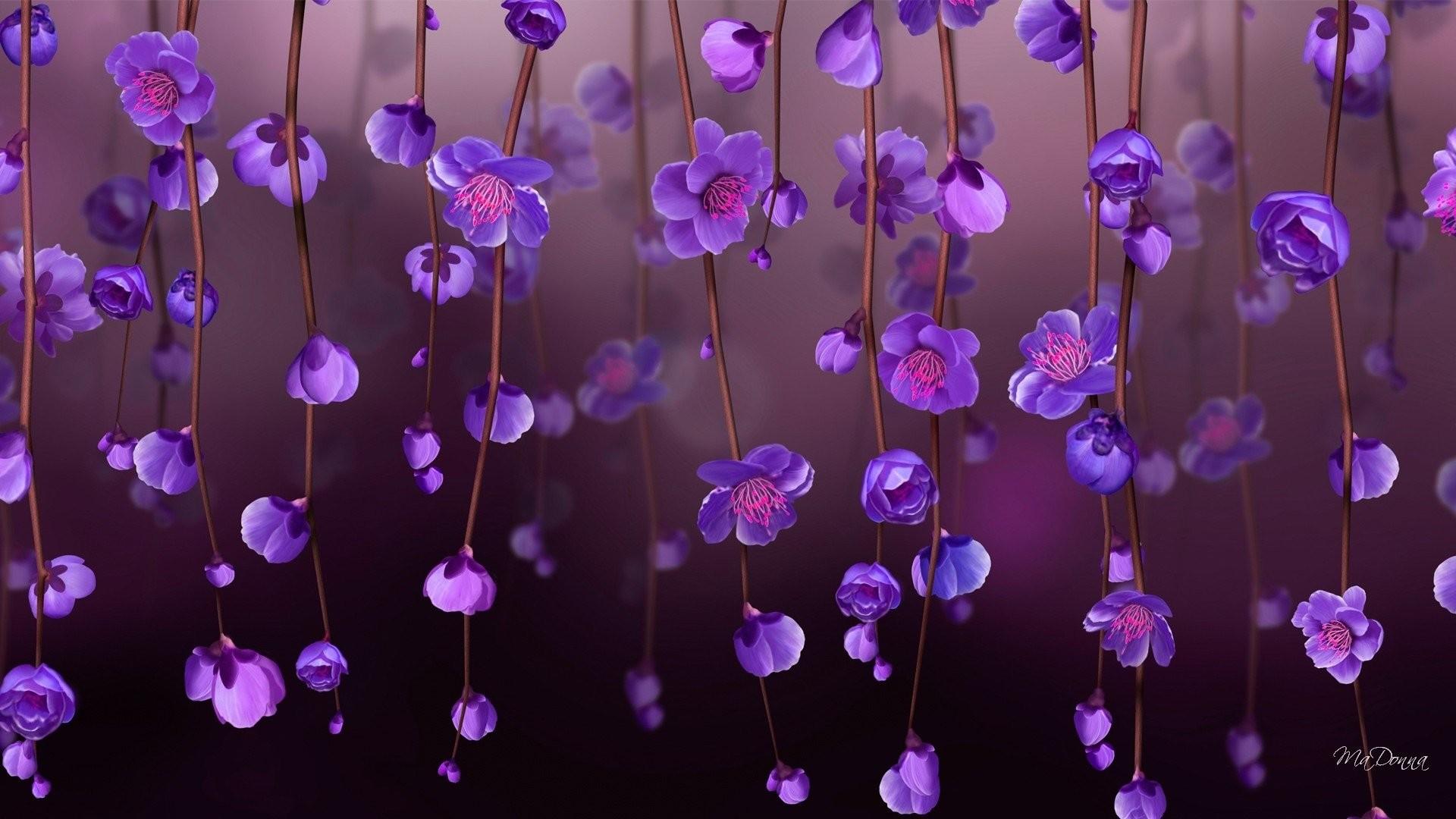 purple flowers wallpaper 183��
