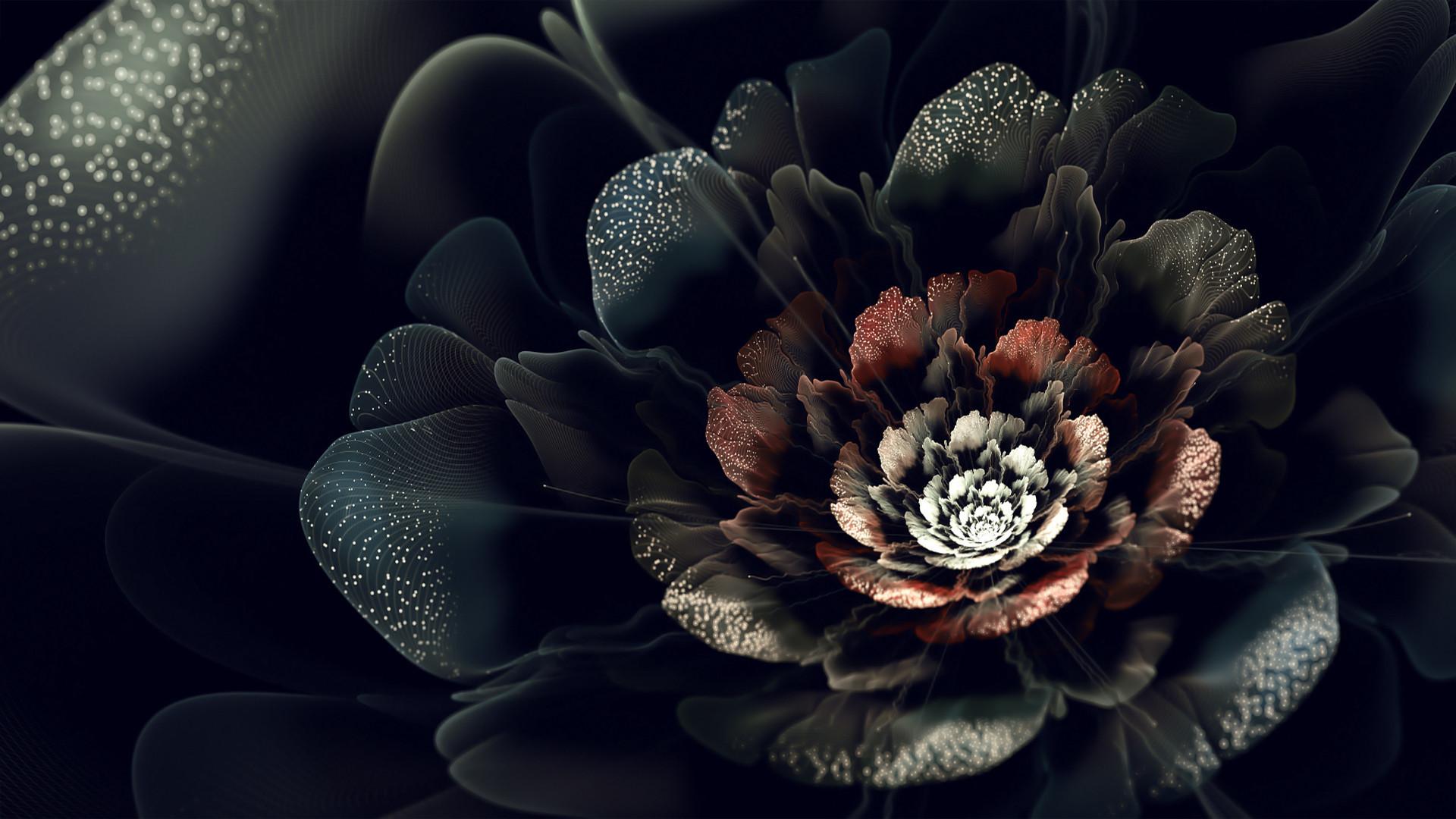 Dark Flower Wallpaper Wallpapertag