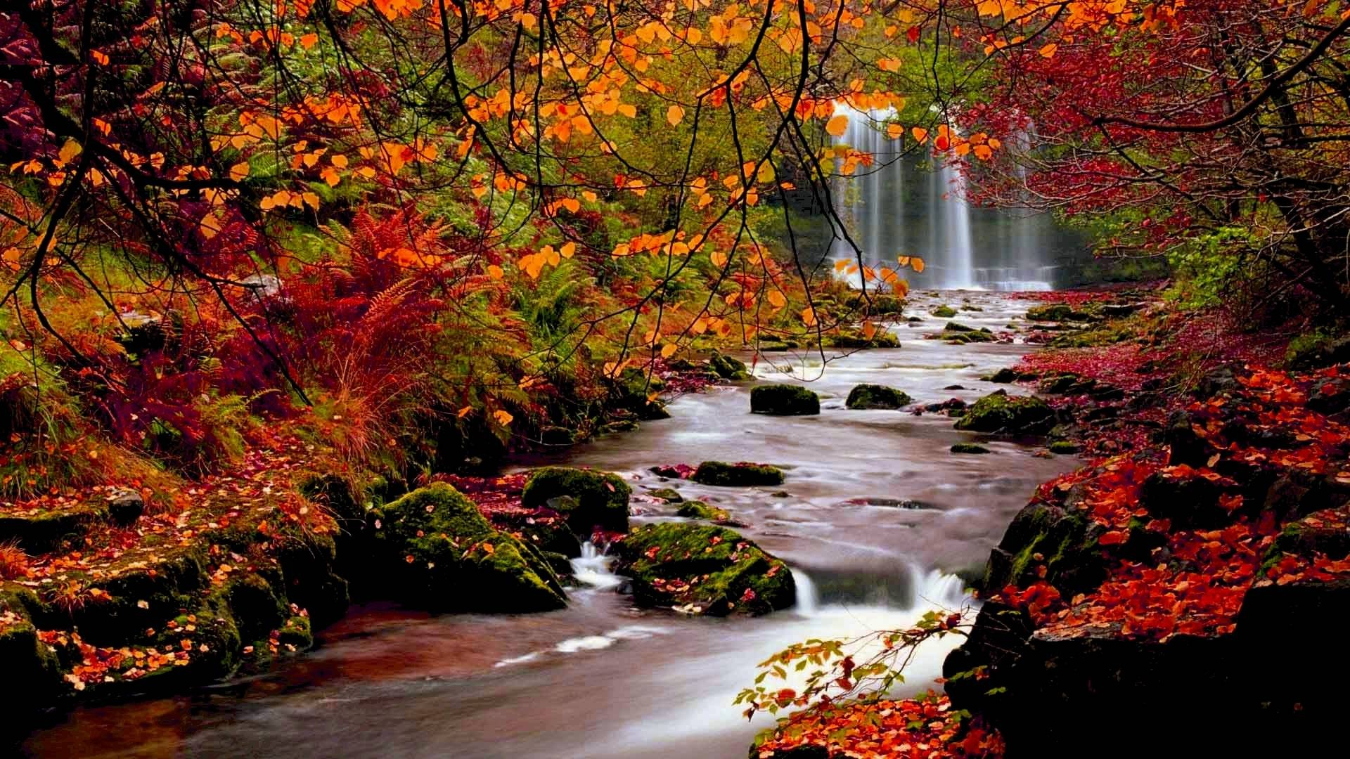 Autumn Wallpaper ·① Download Free Cool HD Wallpapers For