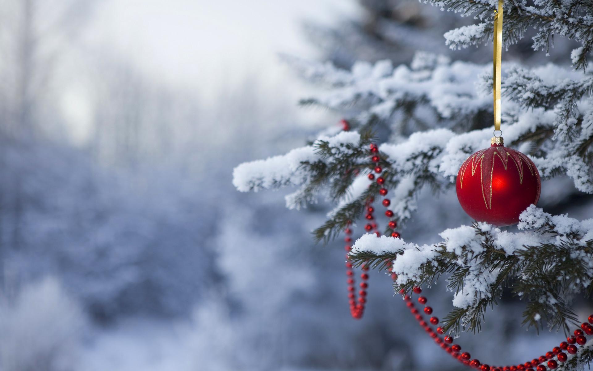 Winter Christmas Desktop Backgrounds ·① WallpaperTag