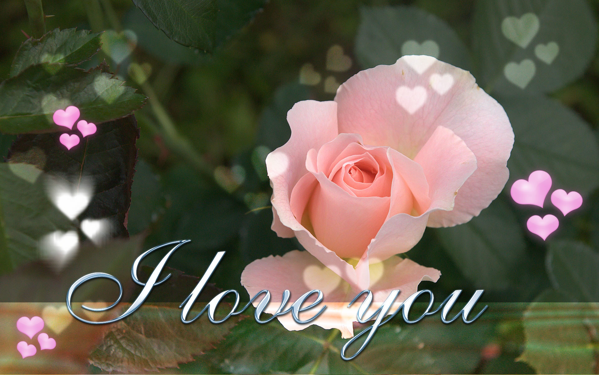 L Love You Wallpapers : L Love You Wallpaper ??