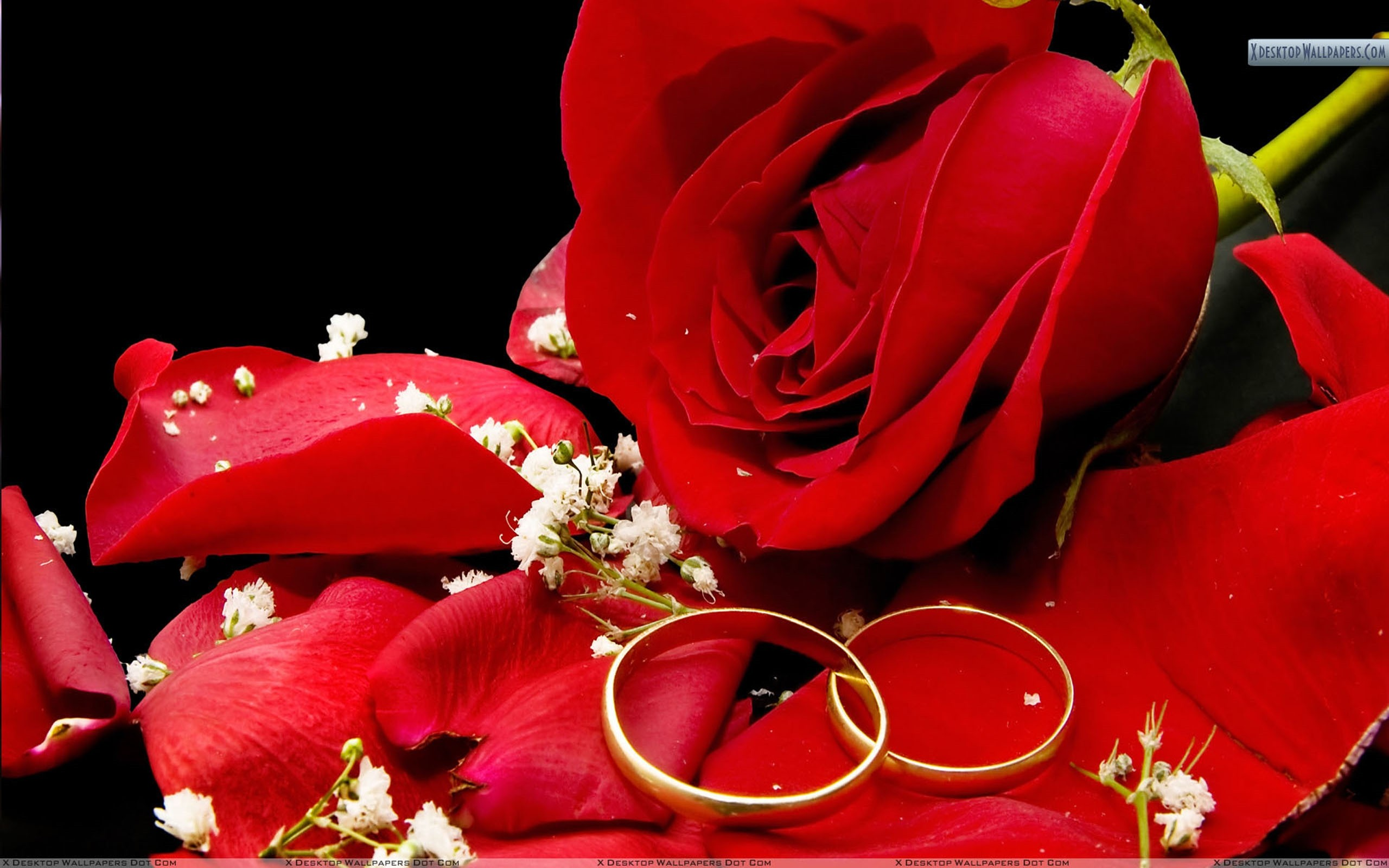 Wedding Background Images Download Free Beautiful Hd