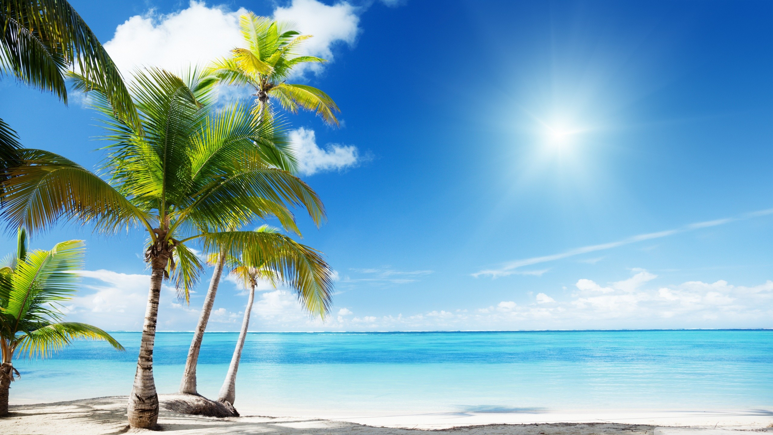 Tropical Beach Wallpaper Desktop ·① WallpaperTag