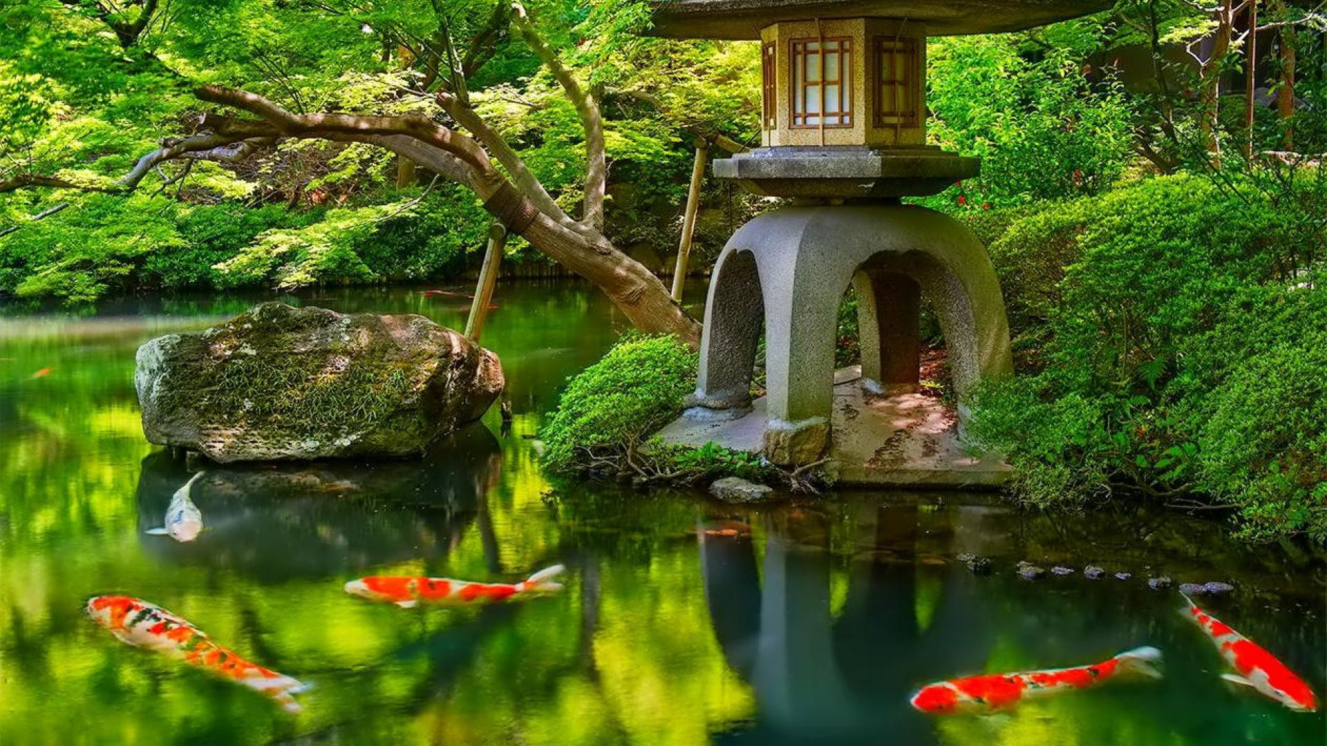 Japanese Garden Wallpapers Wallpapertag