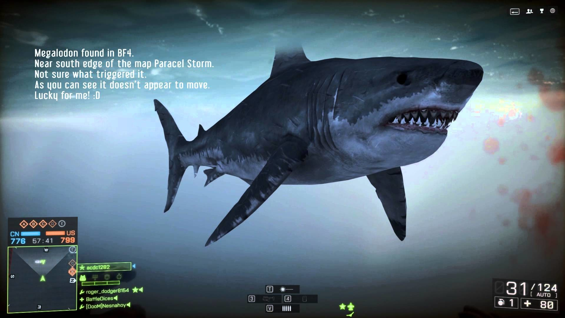Megalodon Wallpapers 183 ①