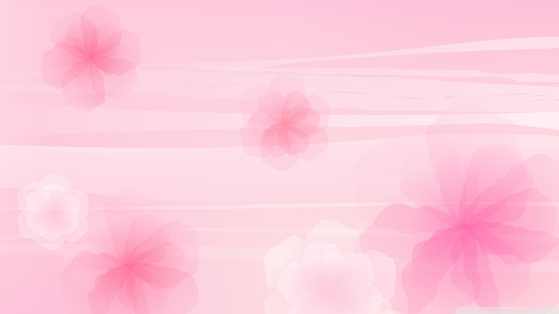 Soft Pink Wallpaper 183 ①