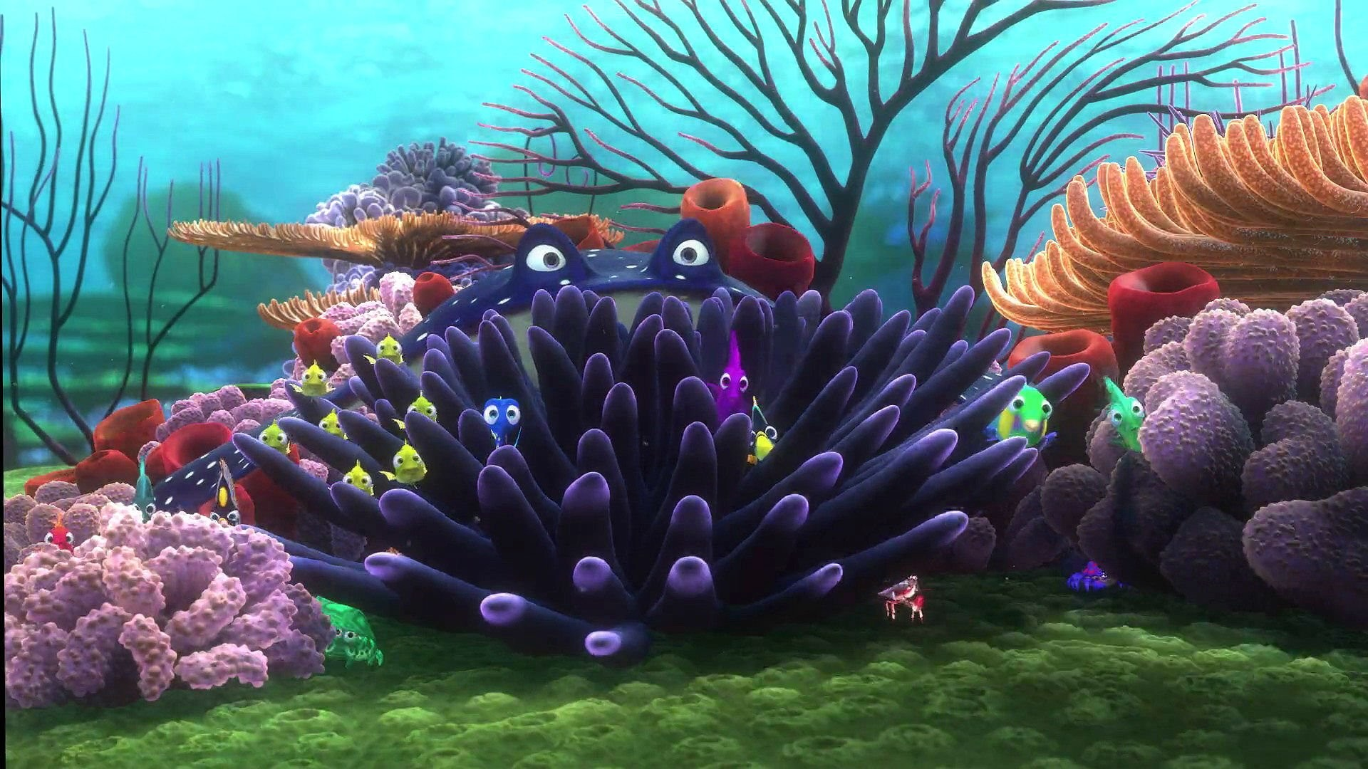 Sfondo balena marlin dory gratis as well CGluLWRvcnktZmluZGluZy1uZW1v likewise Finding Nemo Wallpaper furthermore Sea Turtle Wallpaper 19 besides Disney Fairies Spring Valley Wallpaper Xl. on disney nemo desktop backgrounds