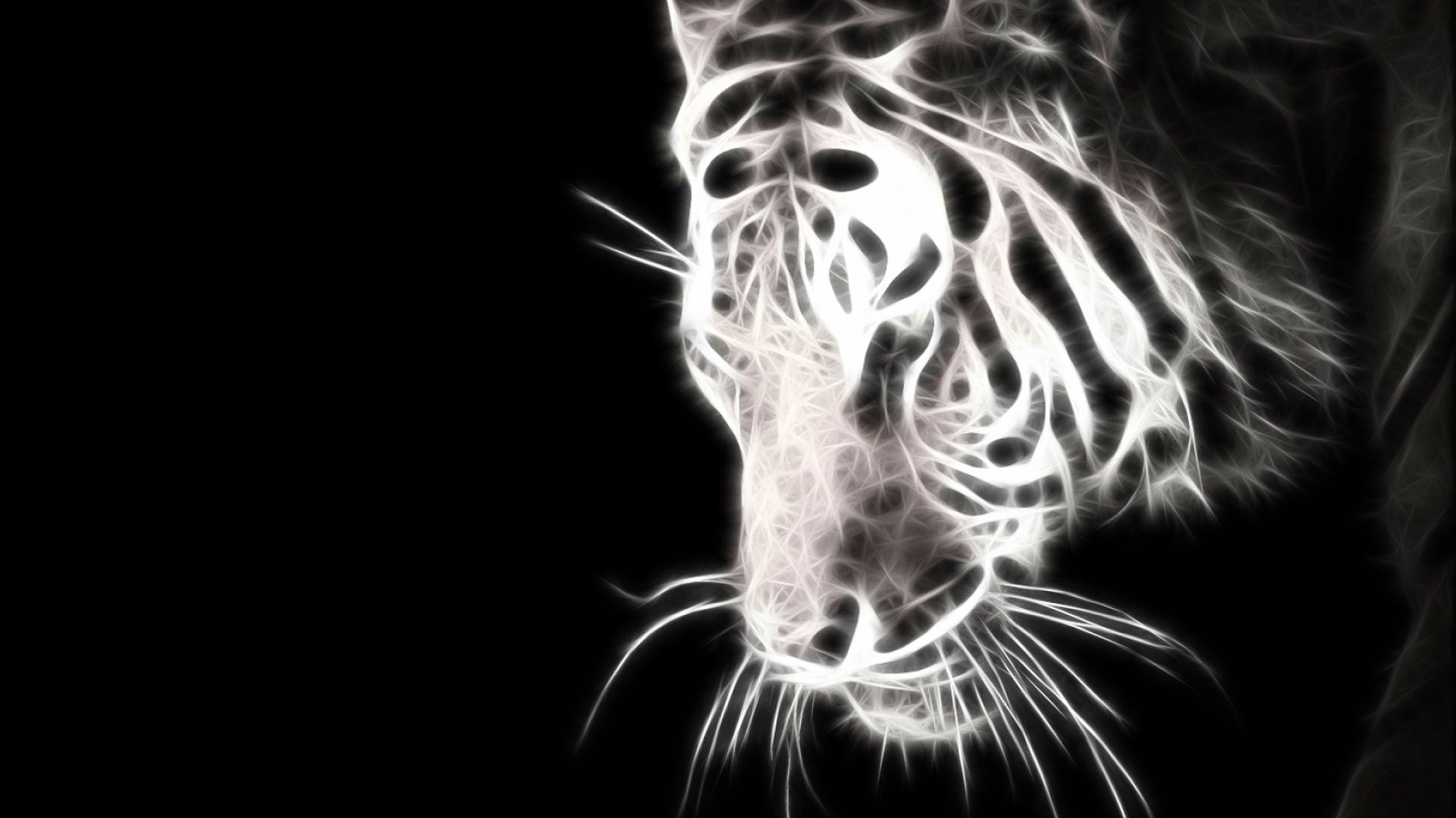white tiger blue eyes wallpaper white tiger blue eye samsung s5230