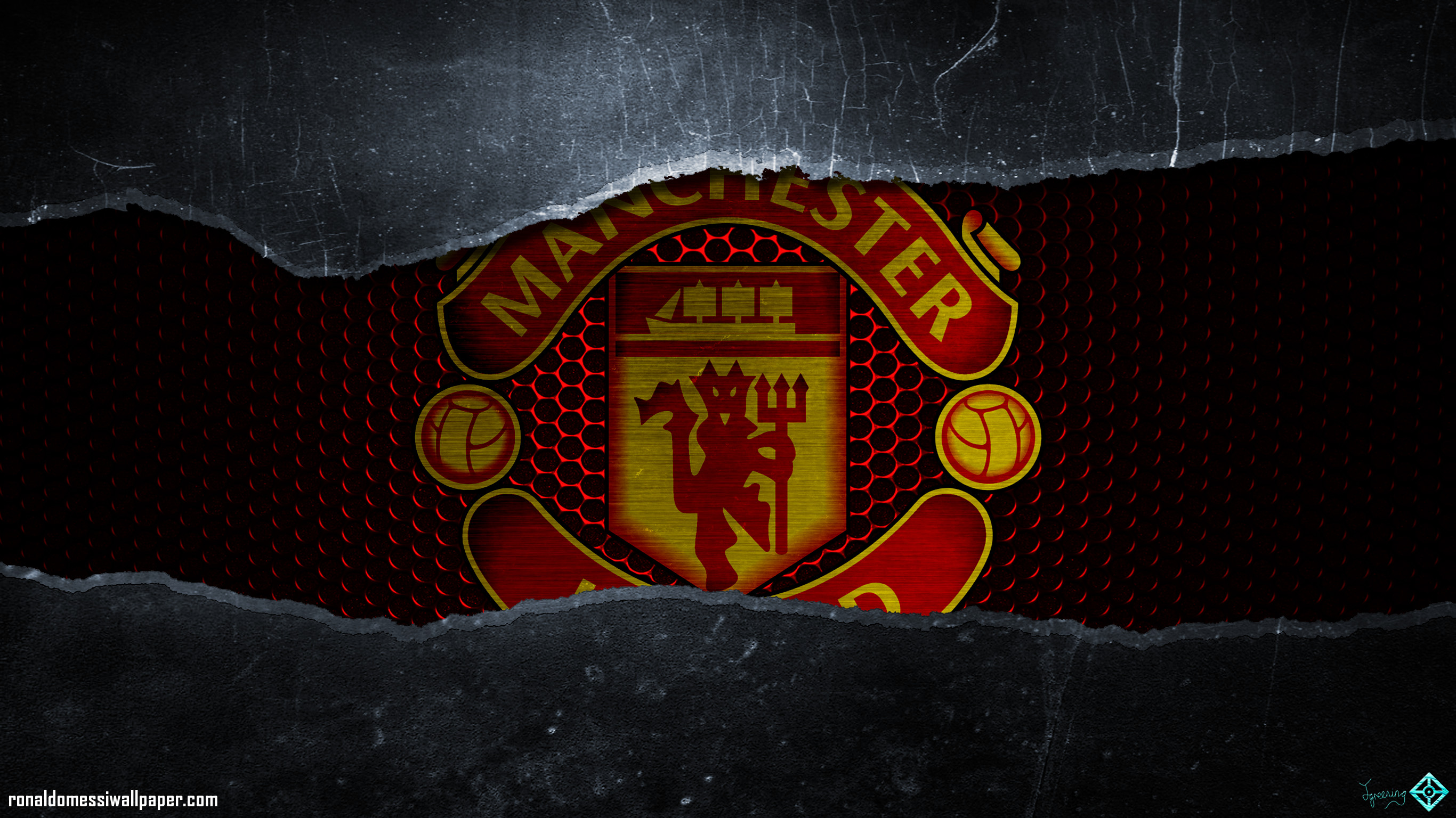 manchester united - HD2732×1536
