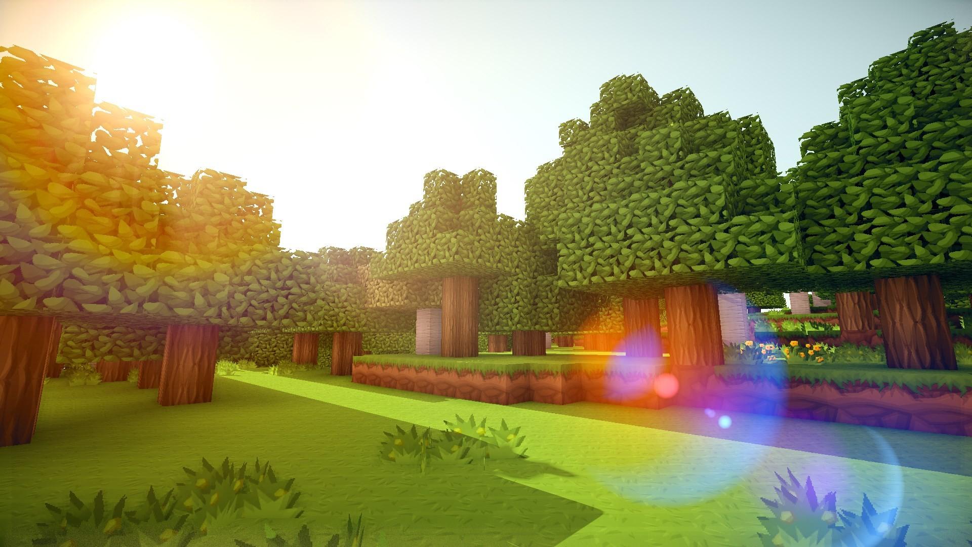 Minecraft Background Pictures 1