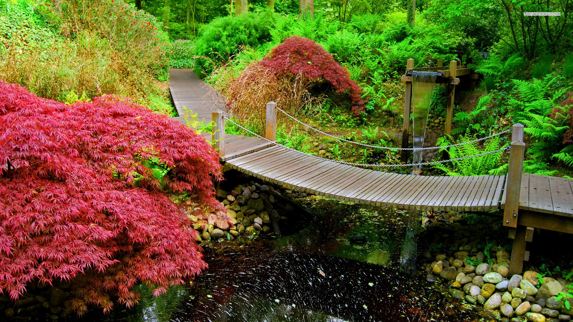 Изображение японского сада на картинке