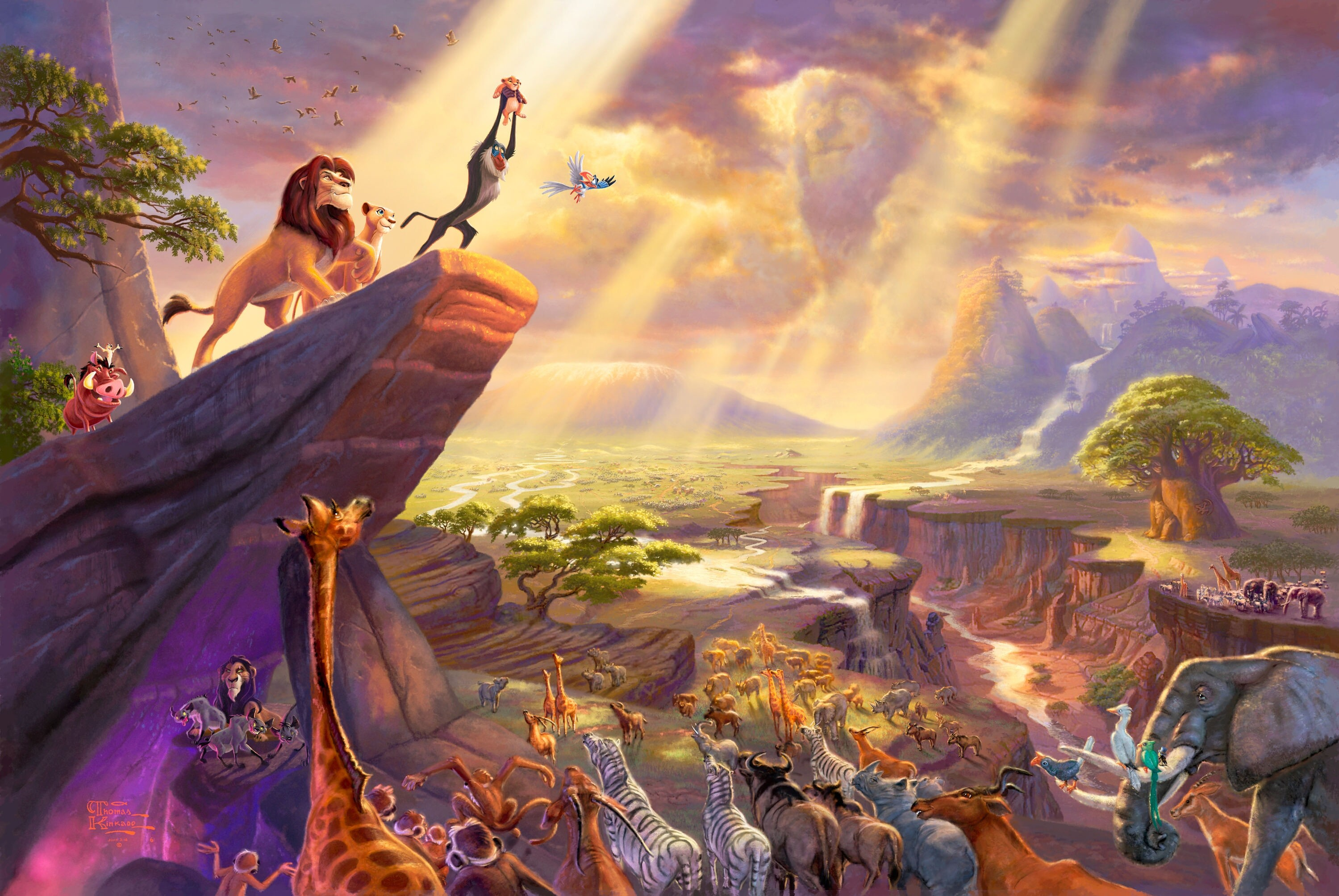 Lion King Wallpaper Download Free Amazing Hd Wallpapers For