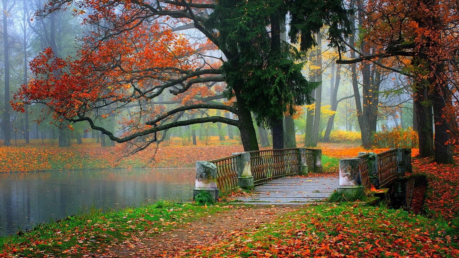 Beautiful Wallpapers Nature ·① WallpaperTag