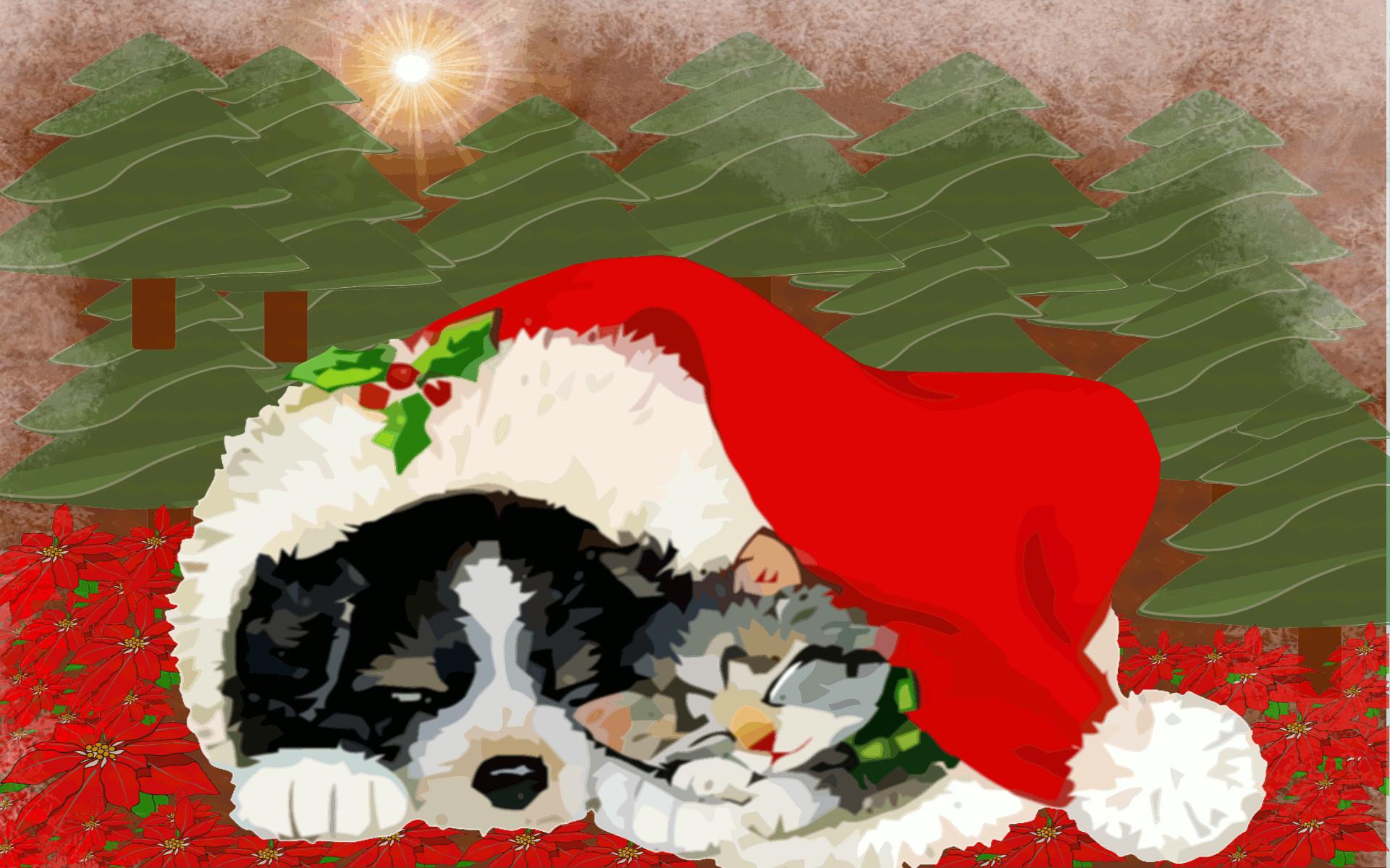 christmas kitten wallpaper