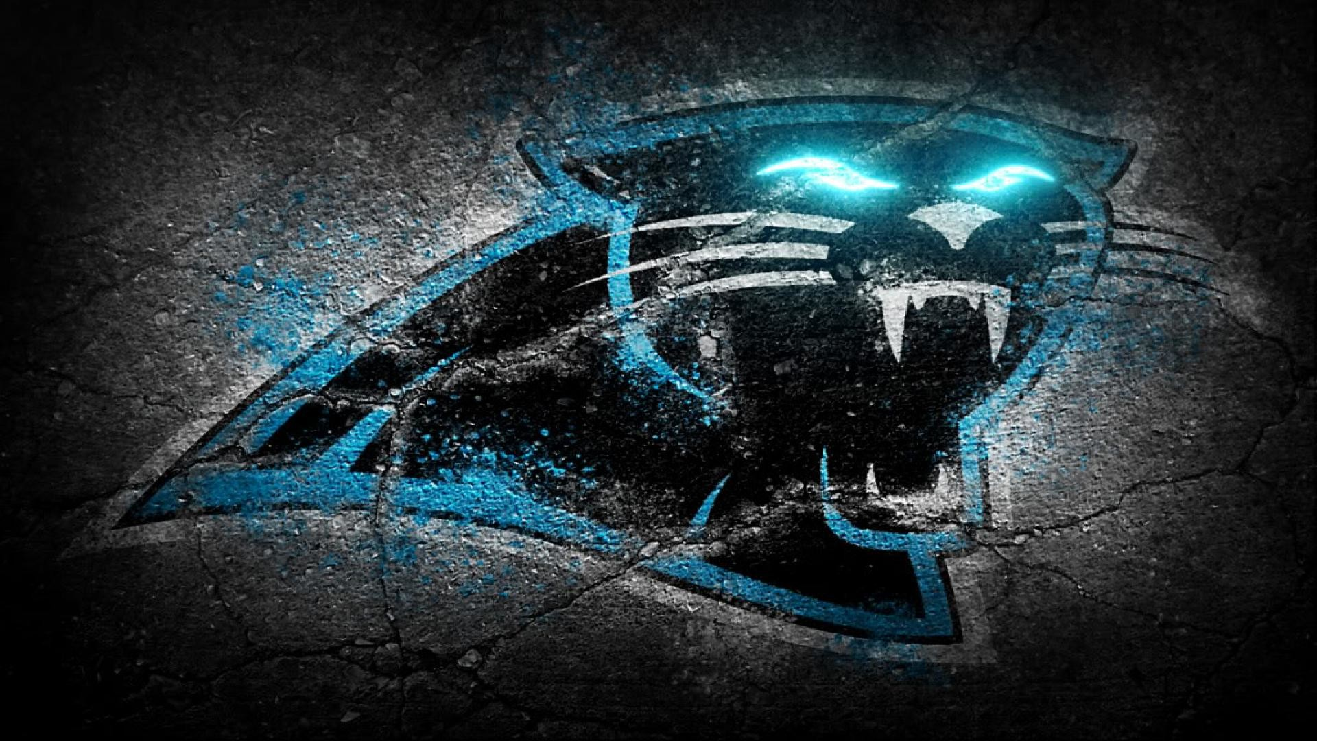 carolina panthers - 1024×640