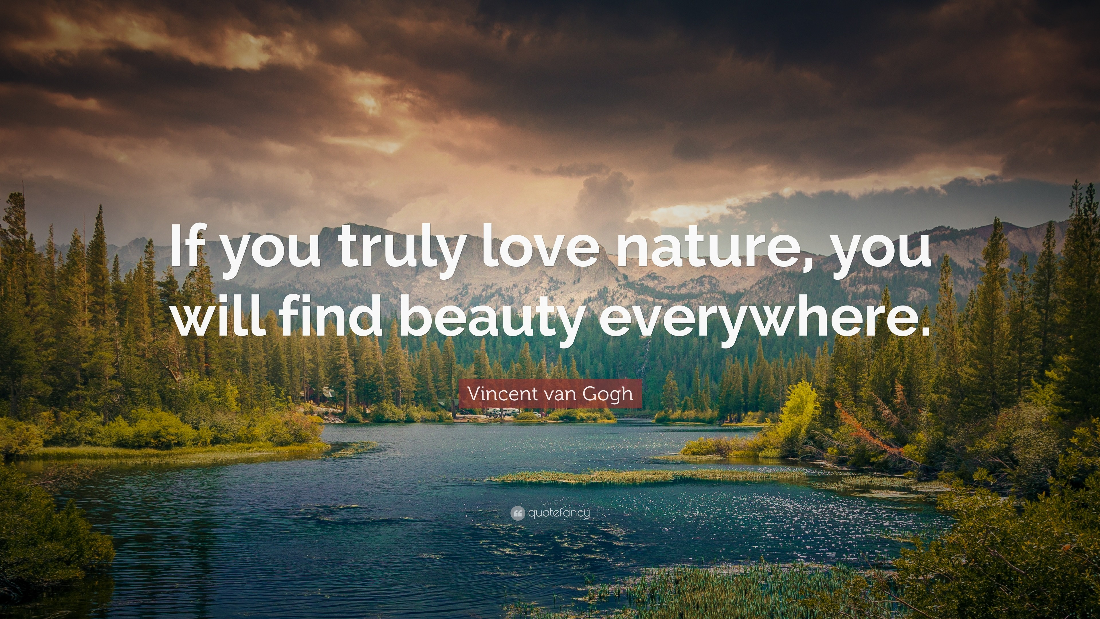 Love Nature Wallpaper Interiors Inside Ideas Interiors design about Everything [magnanprojects.com]
