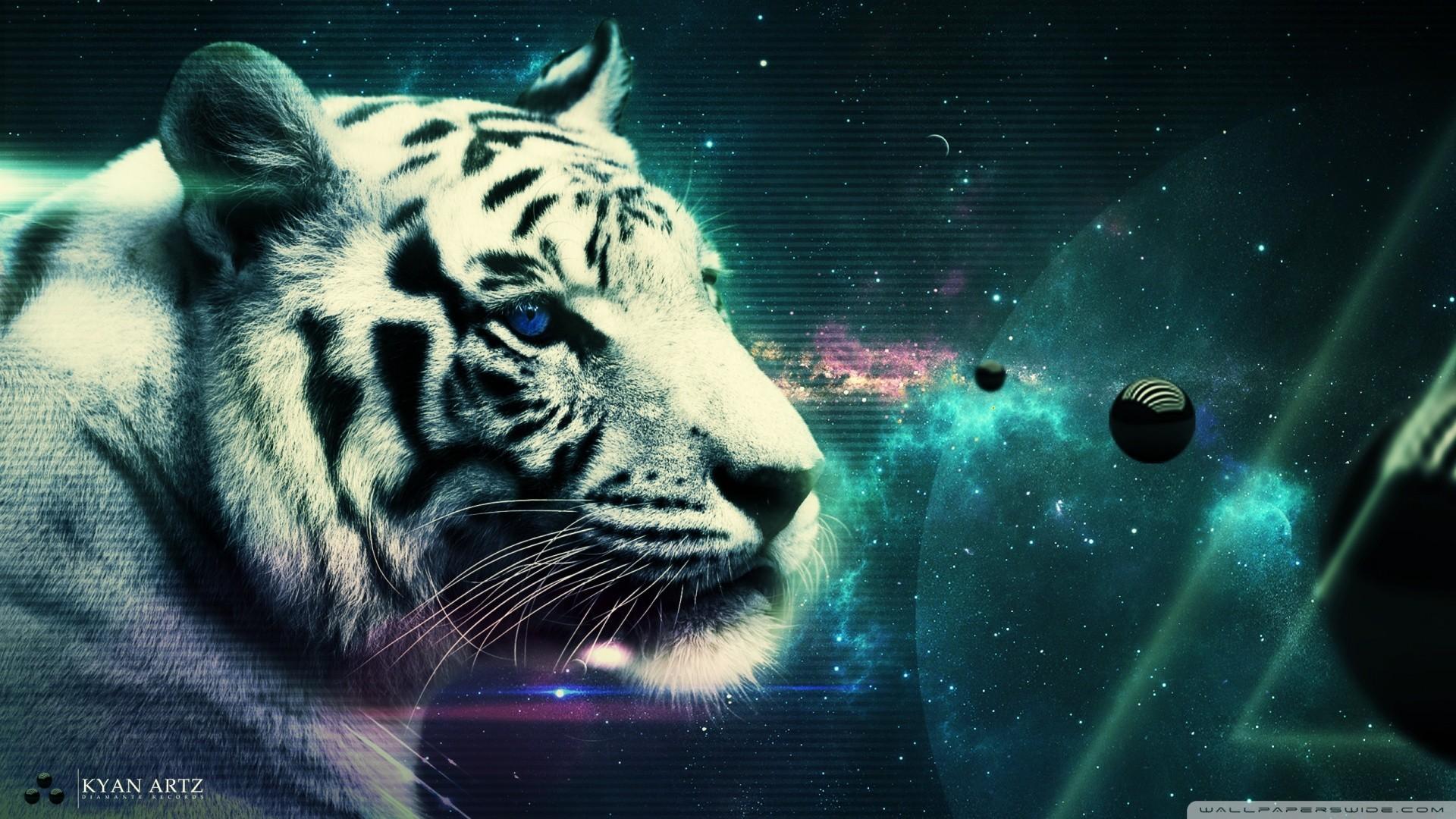 Cool Tiger Wallpapers ·① WallpaperTag