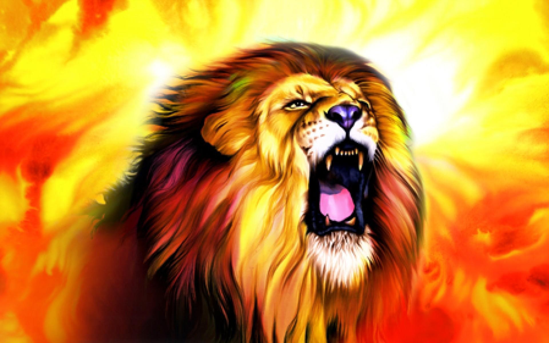 Male Lion Faces Wallpaper