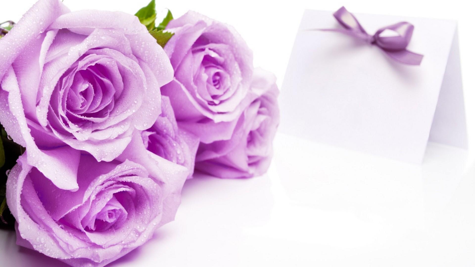 44 Wedding Backgrounds ① Download Free Beautiful Full Hd