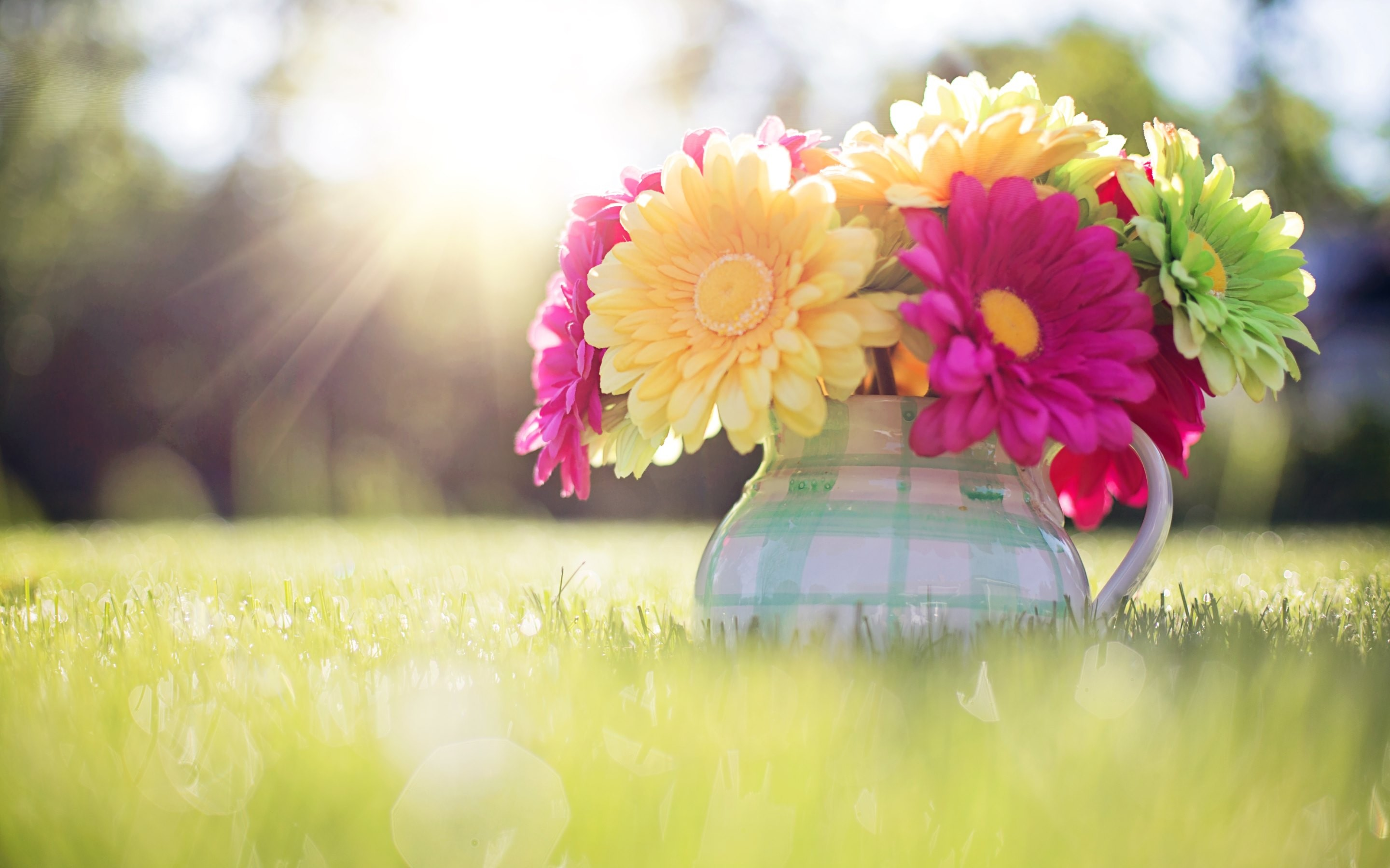 44 spring wallpapers download free hd wallpapers for - Free computer backgrounds for spring ...