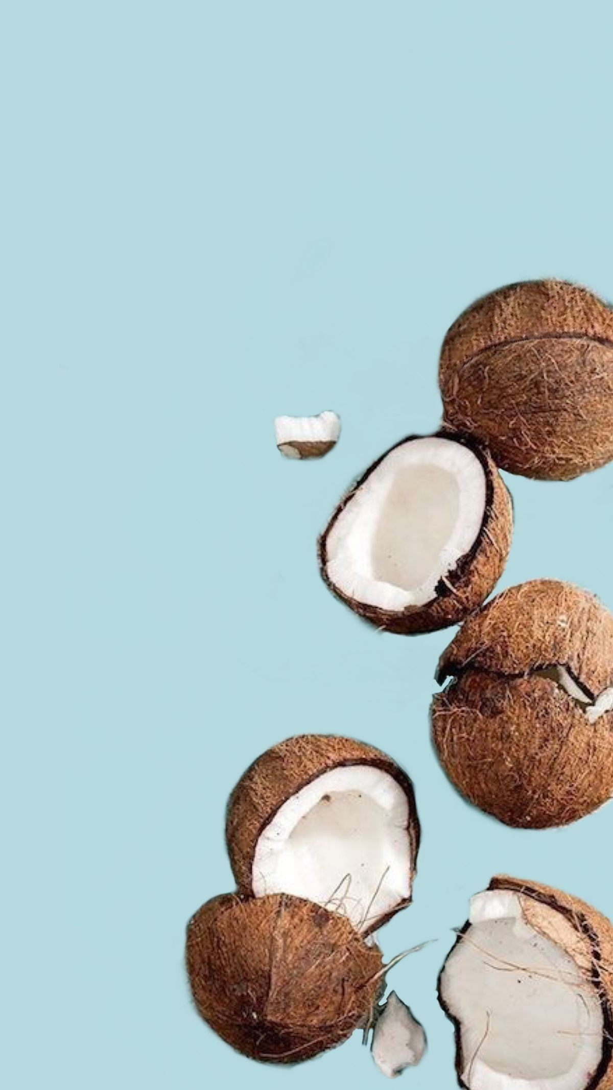 Coconut Wallpapers Wallpapertag