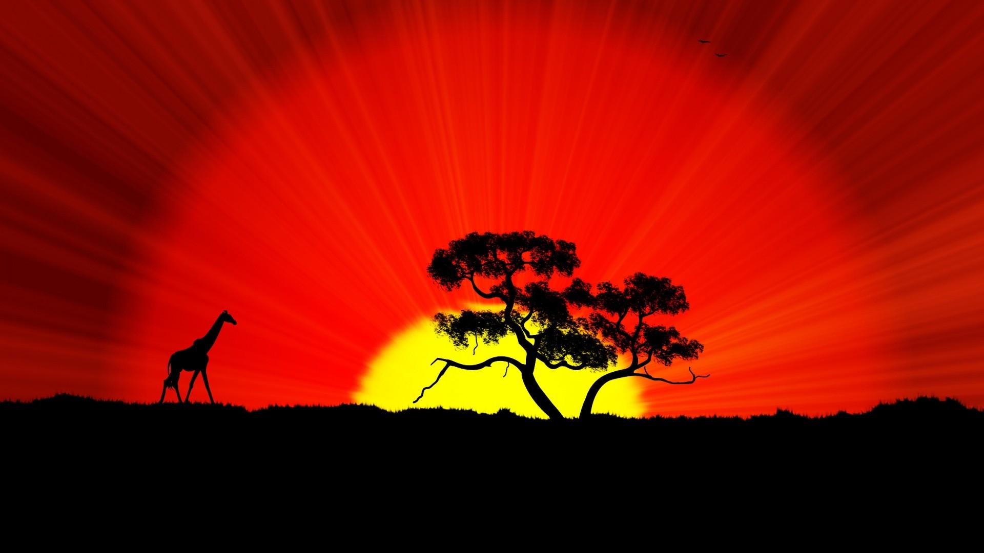 African Landscape Sunset Background Wallpaper