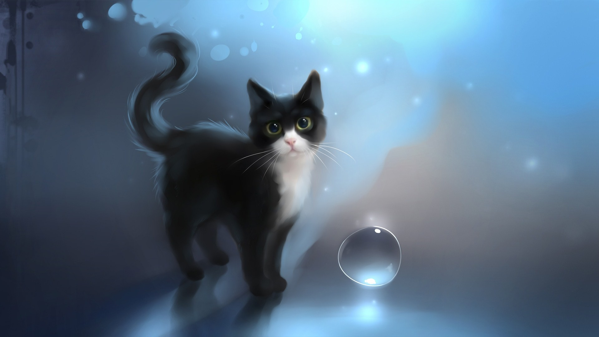 60 Cat Wallpapers Download Free Awesome Full Hd Wallpapers For
