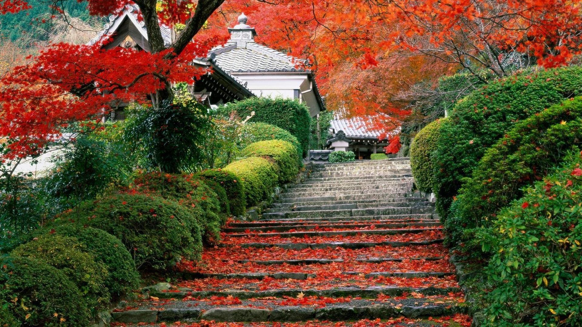 1920x1080 Japanese Garden Wallpaper Download Top