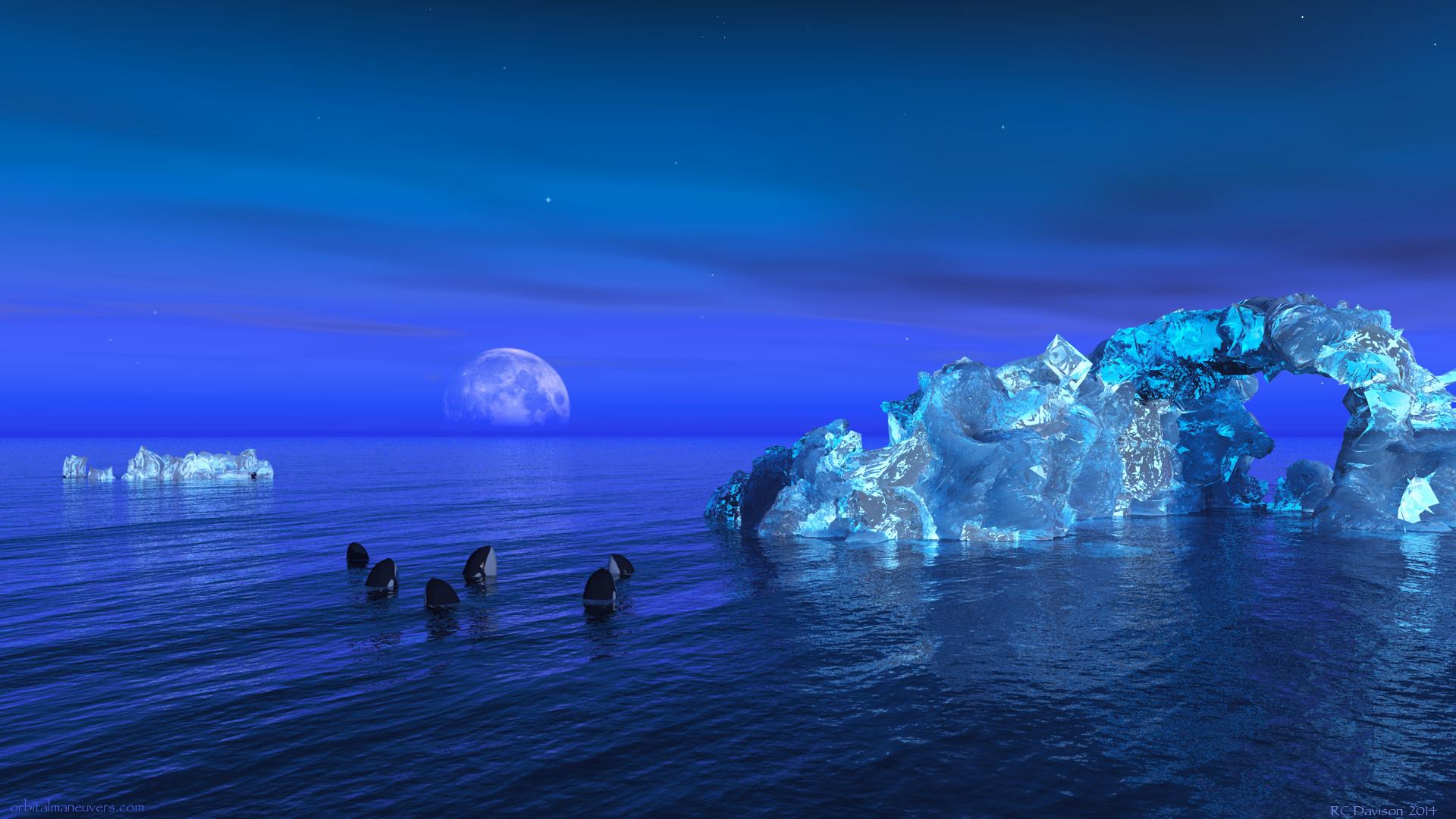 Orca wallpaper hd altavistaventures Image collections