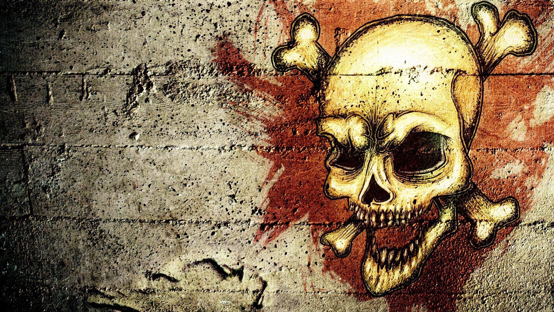 hd skulls wallpaper