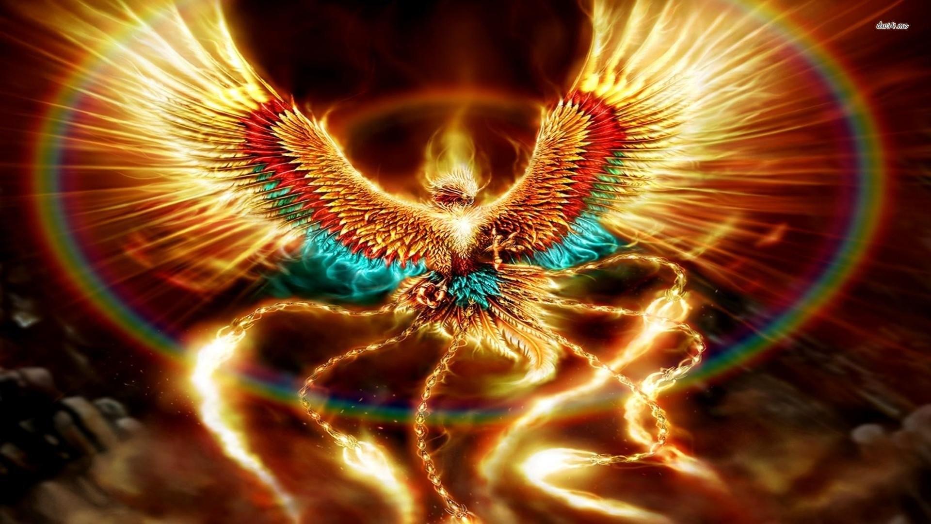 Phoenix bird wallpapers wallpapertag - Fenix bird hd images ...