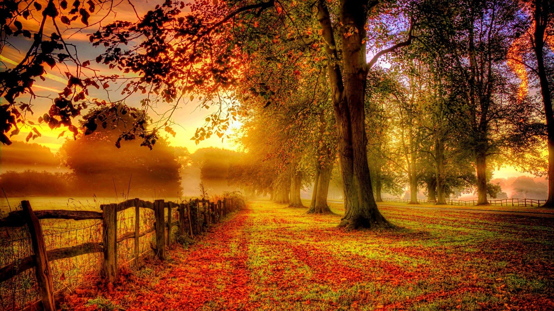 42 Autumn backgrounds ·â'  Download free stunning HD wallpapers