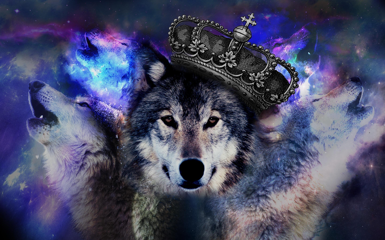 Классные картинки на обои волк