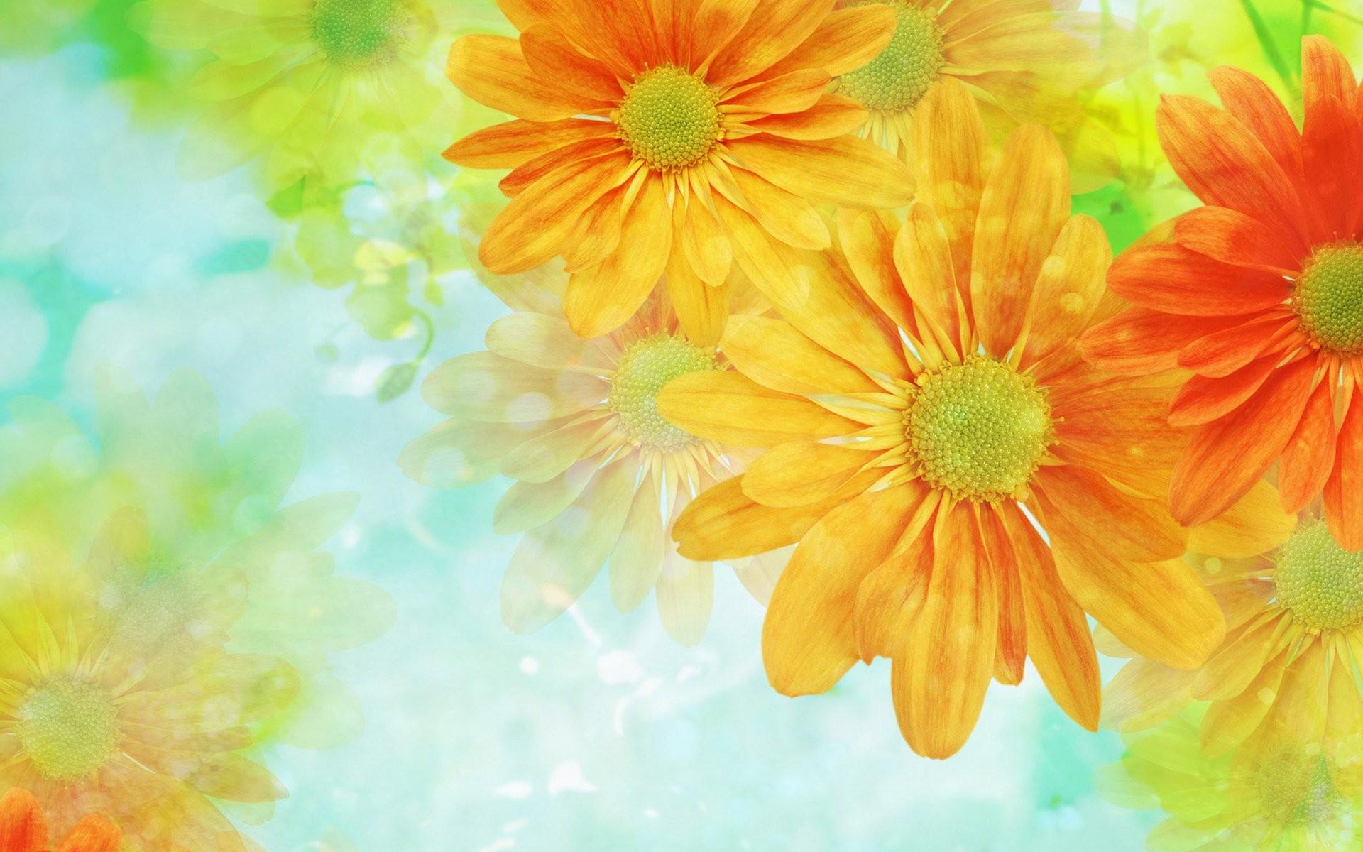 Flower Lock Screen Nature Wallpaper Hd For Mobile