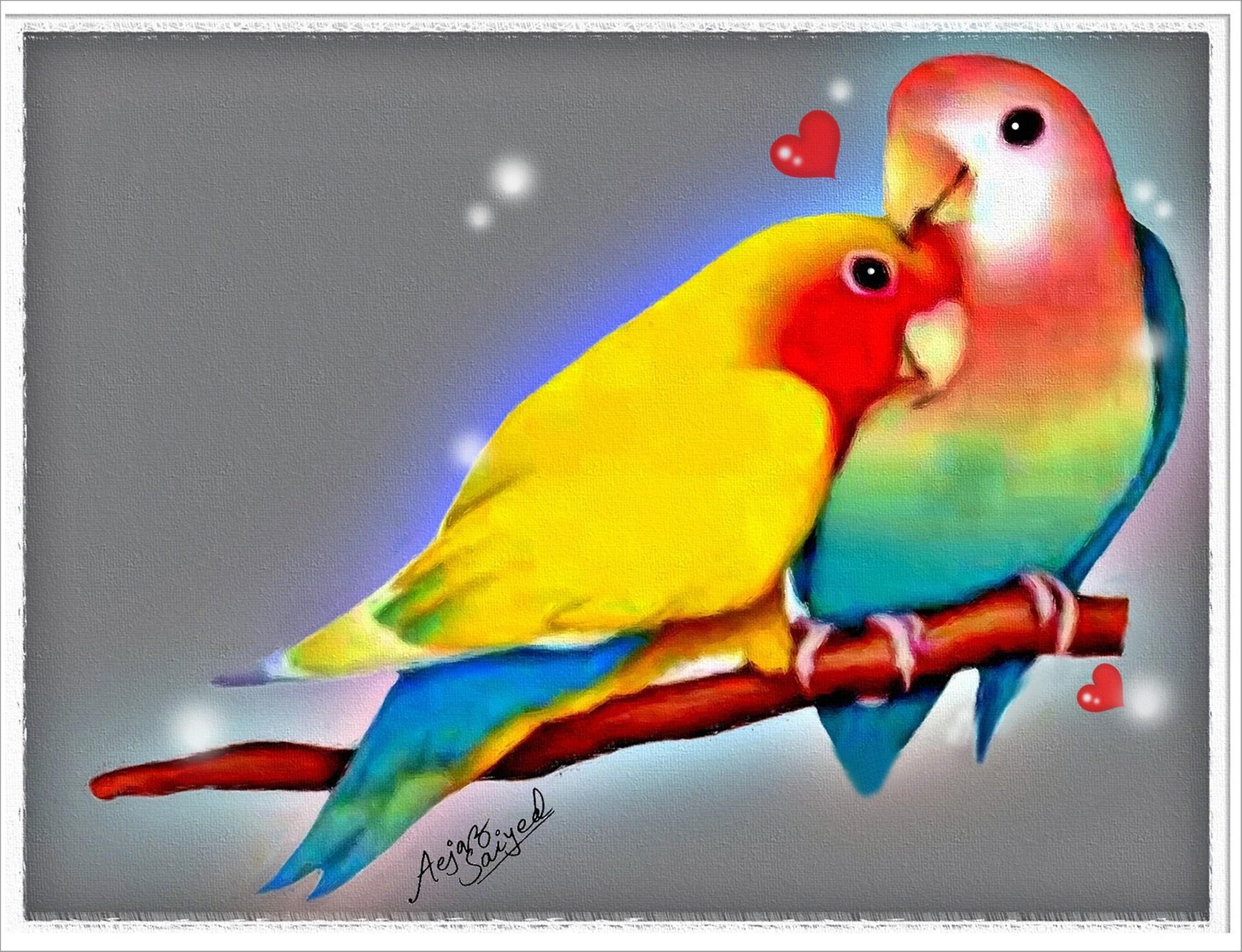 Wallpapers Love Birds: Lovebirds Wallpapers ·①