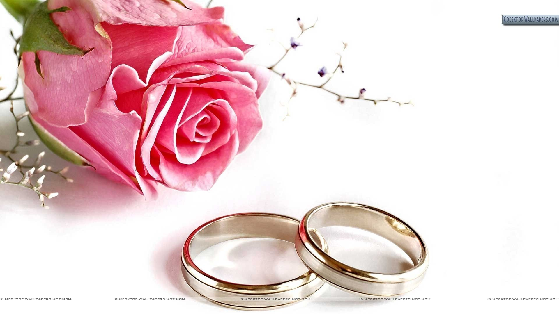 44+ Wedding backgrounds ·① Download free beautiful full HD ...