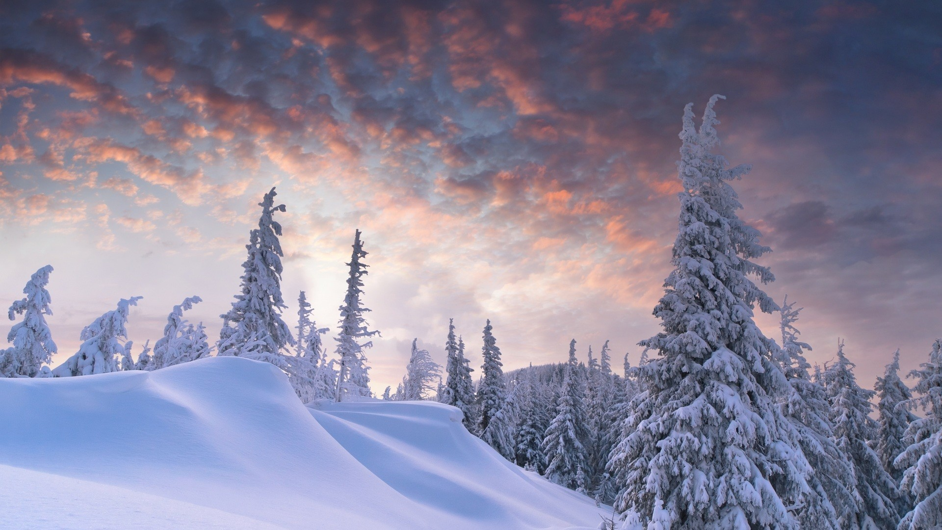 christmas winter scenes wallpaper ·①