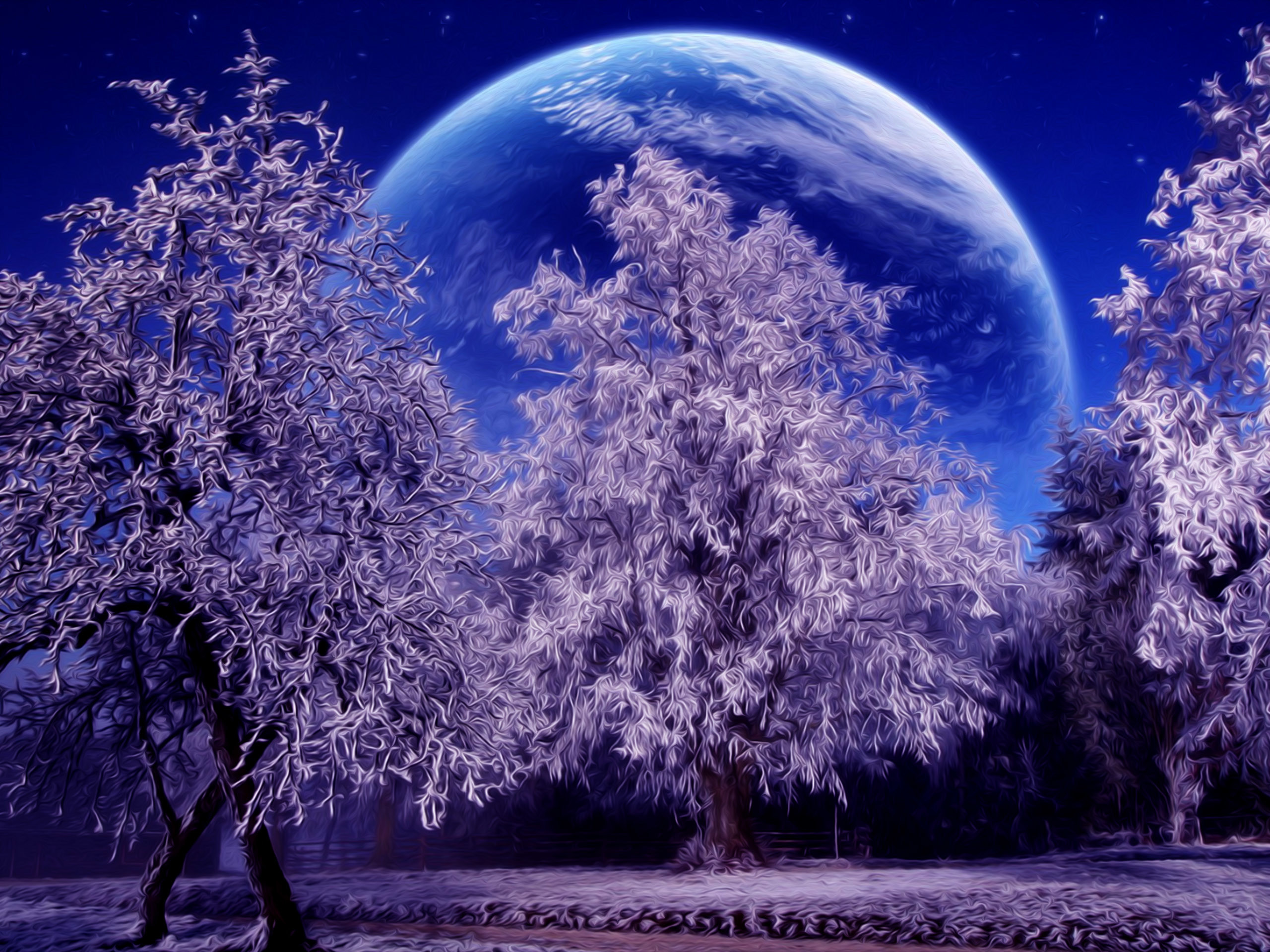 Winter Snow Scenes Wallpaper