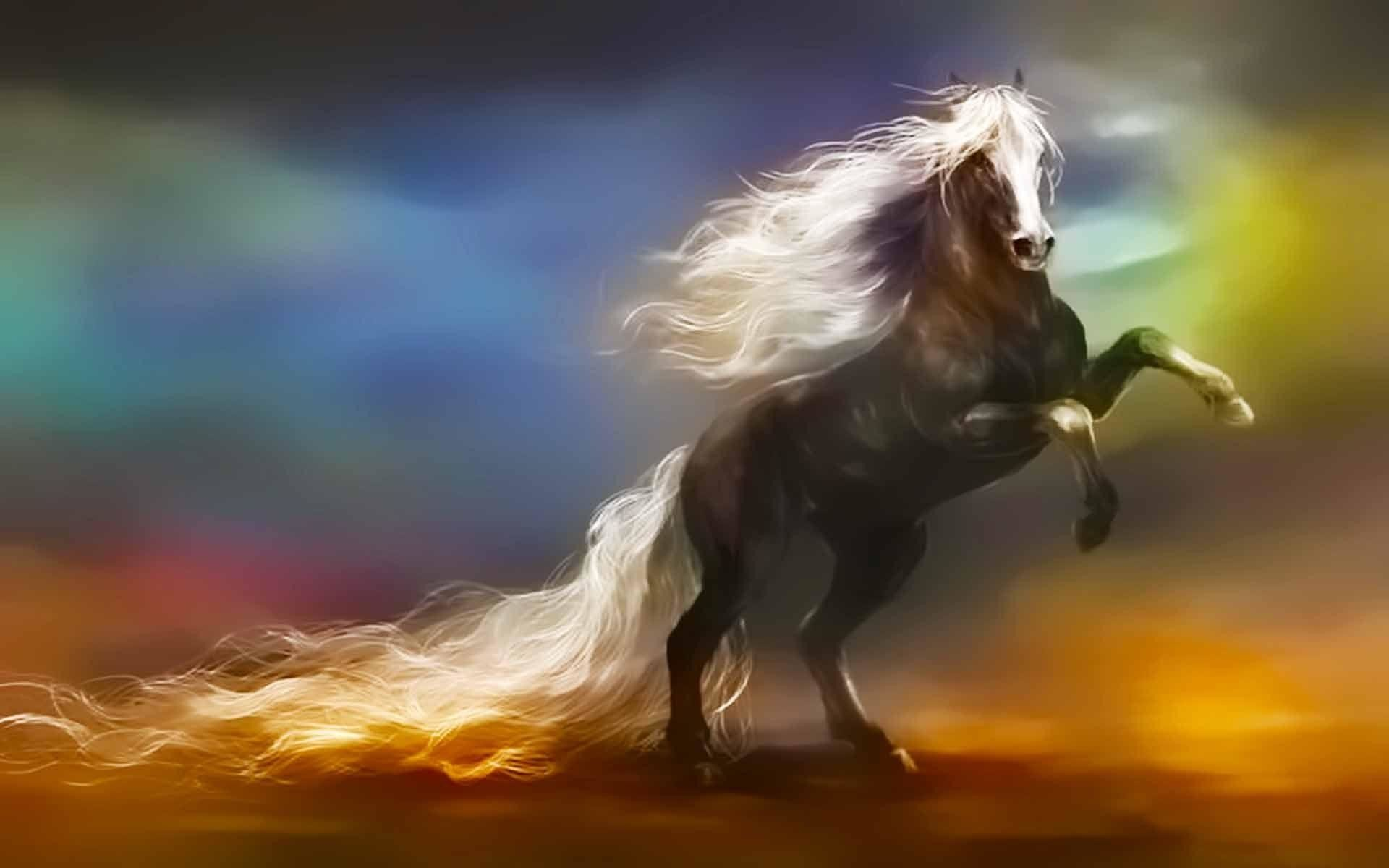 1920x1200 Wallpapers For U003e Fantasy Horse Wallpaper