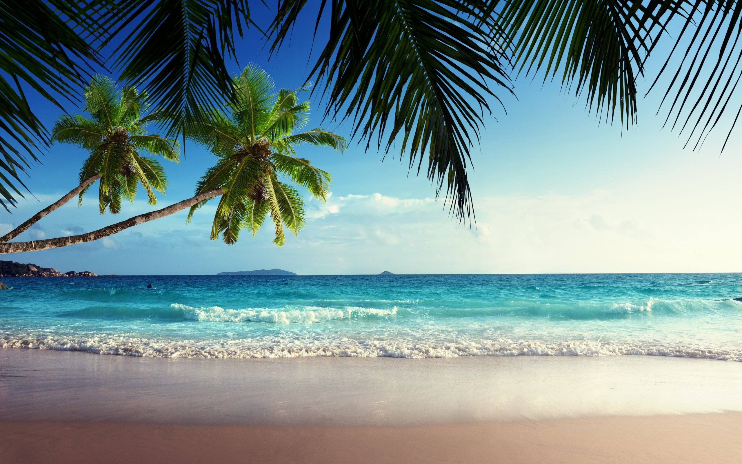 tropical beach desktop backgrounds ·①