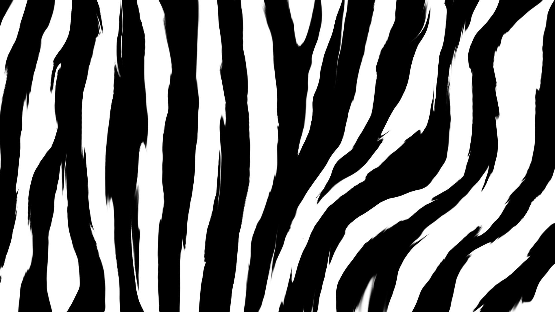 Zebra Prints Patterns Rainbow Zebra Backgrou...