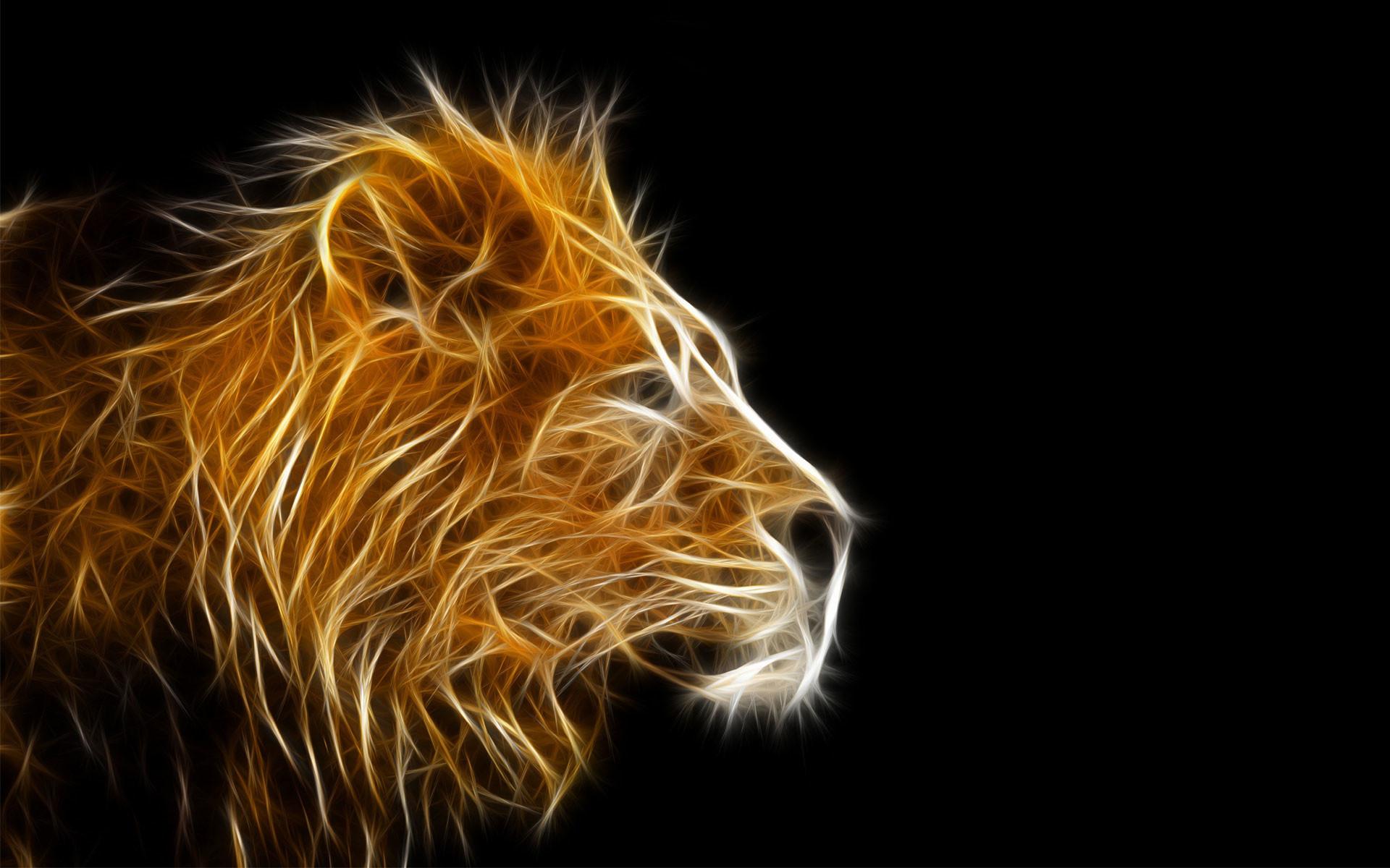Fire Lion Wallpapers ·â' WallpaperTag