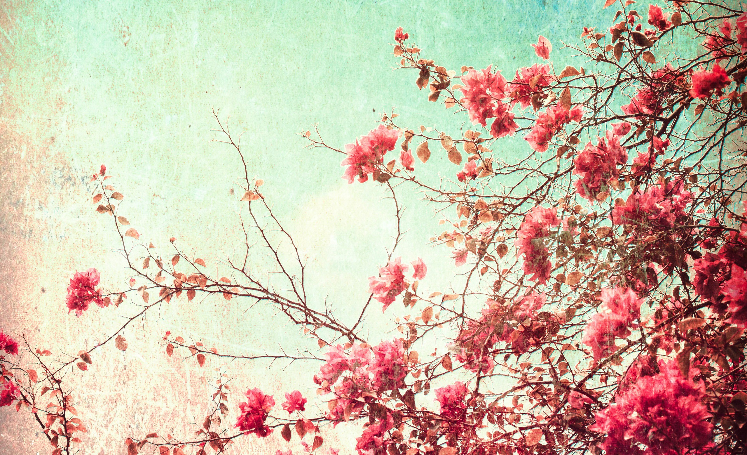 Vintage floral background download free cool full hd for Wallpaper home vintage