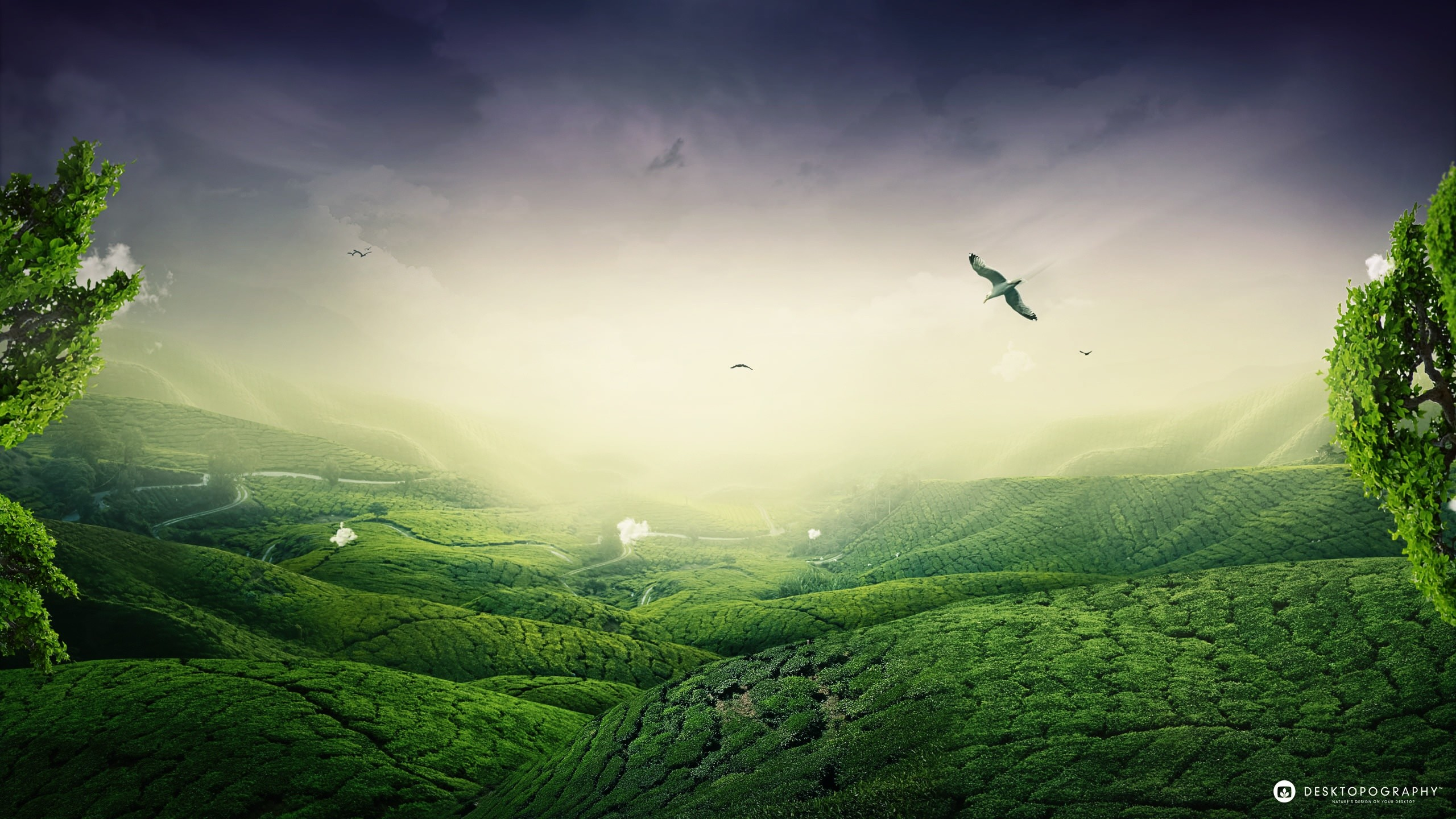 2560x1440 Hd Landscape Wallpapers Collection For Free Download · Download · hdwallpapers.in