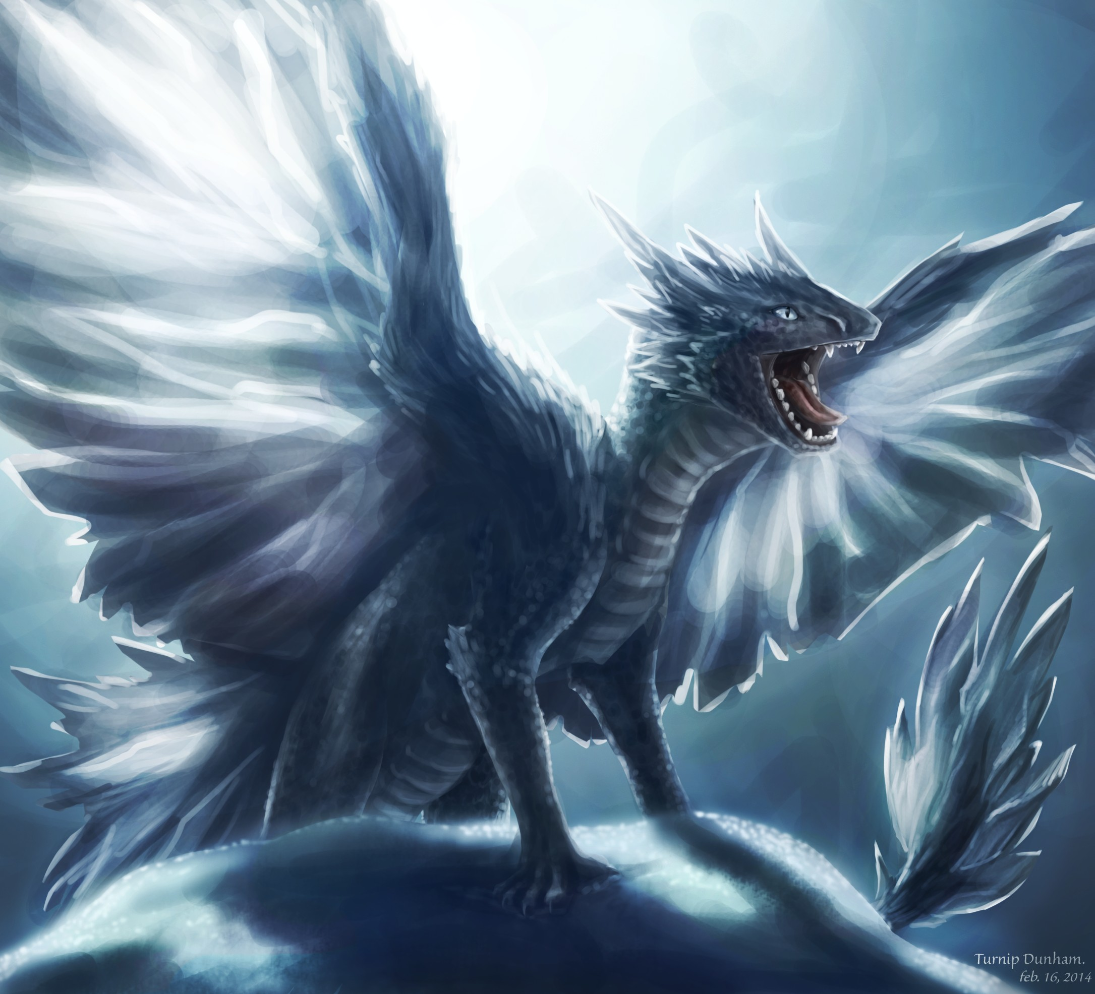 Dragon Background Download Free Amazing Full Hd Backgrounds
