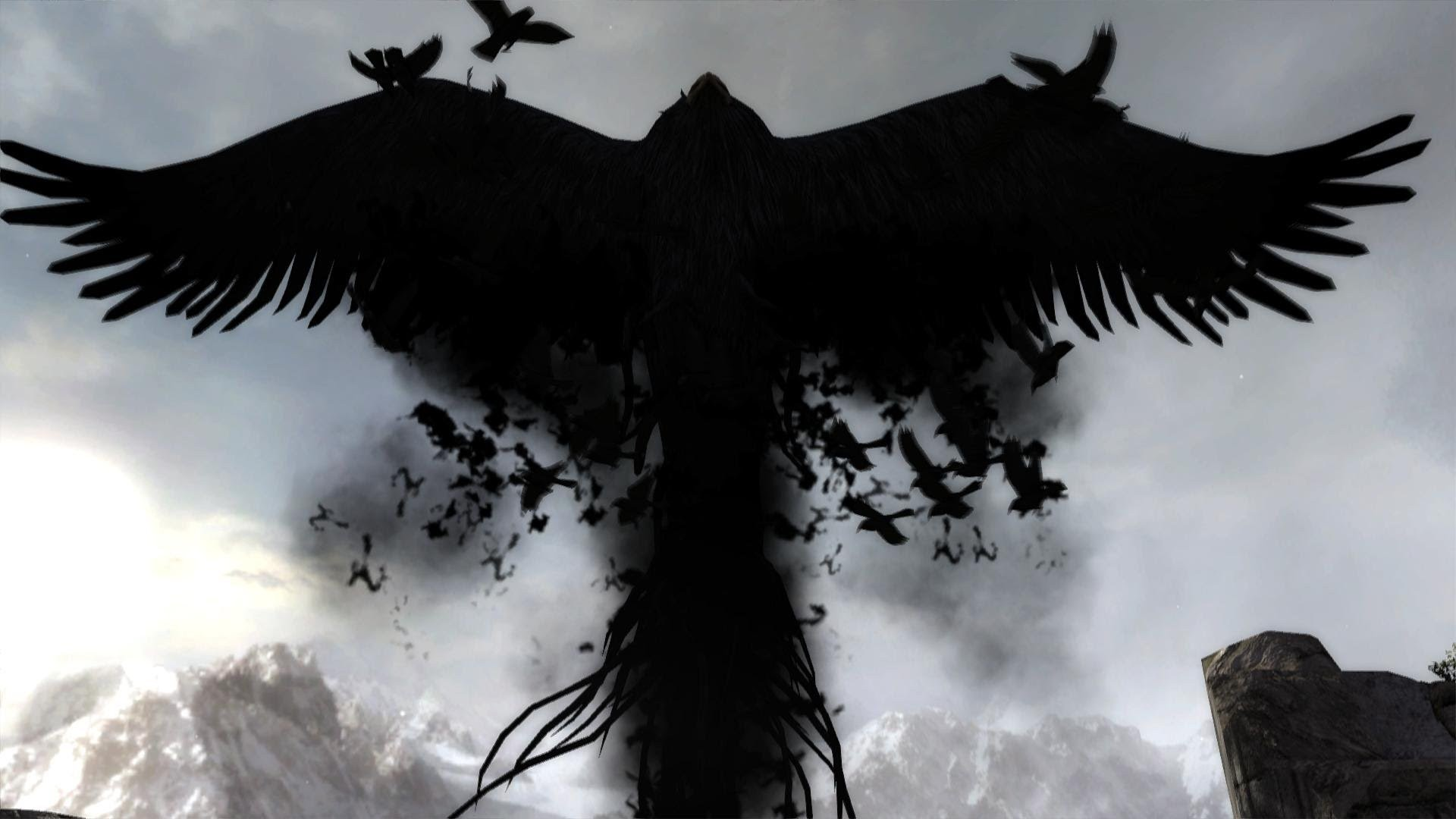 Crow Wallpaper Download Free Backgrounds For Desktop Mobile