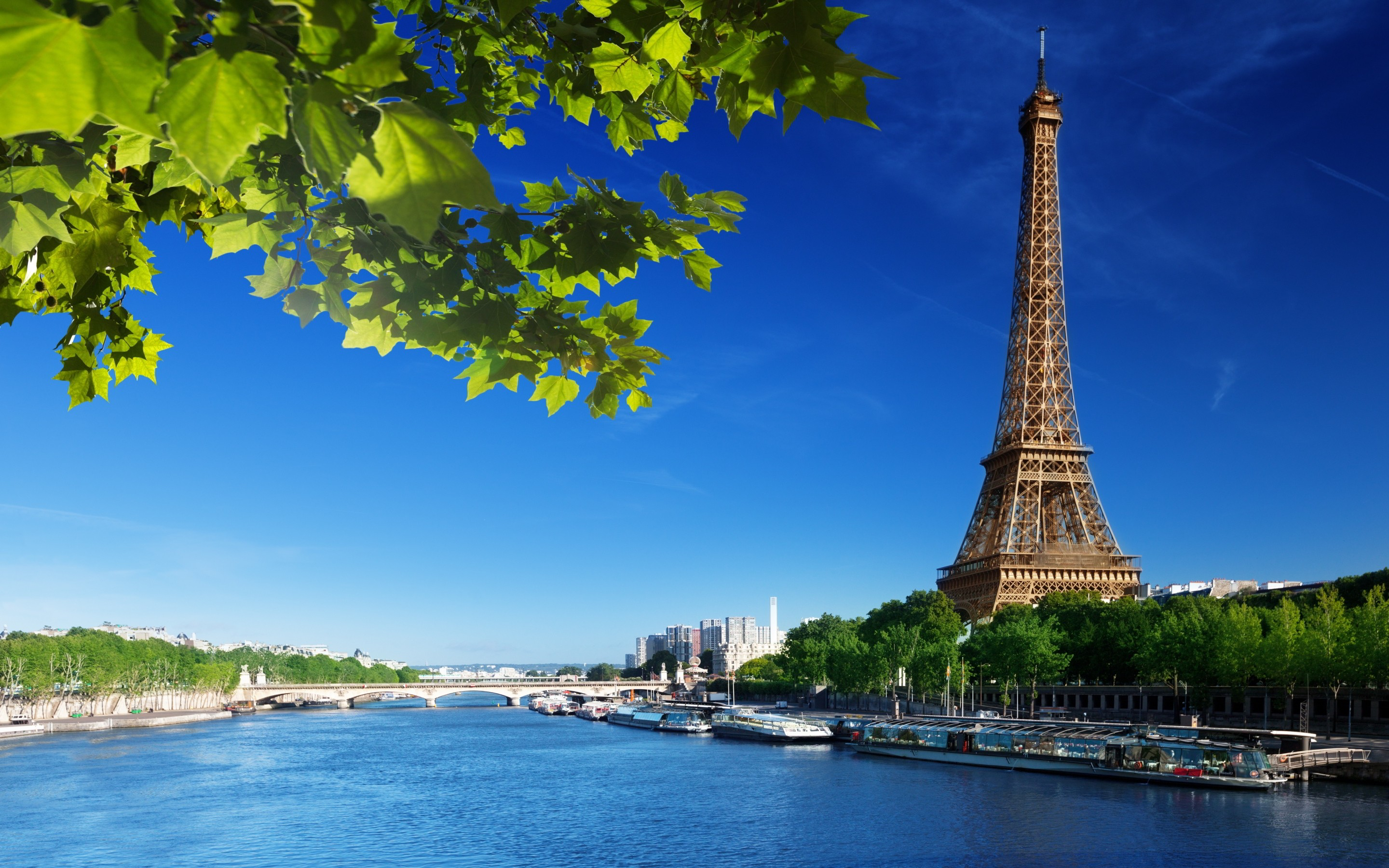 Paris Wallpaper ·① Download Free Stunning HD Wallpapers Of